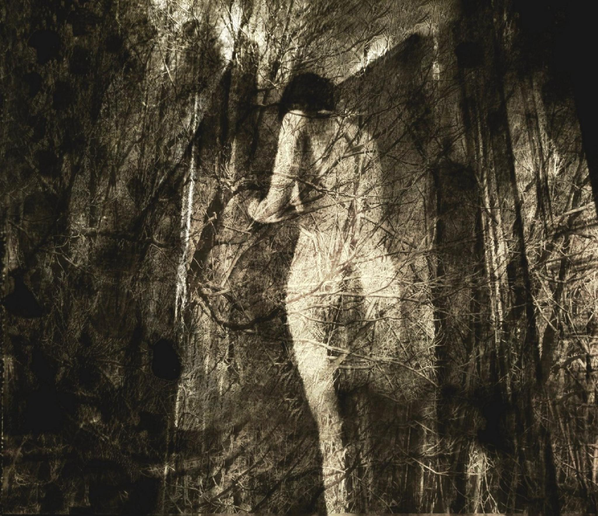the wood woman... by Philippe Berthier
