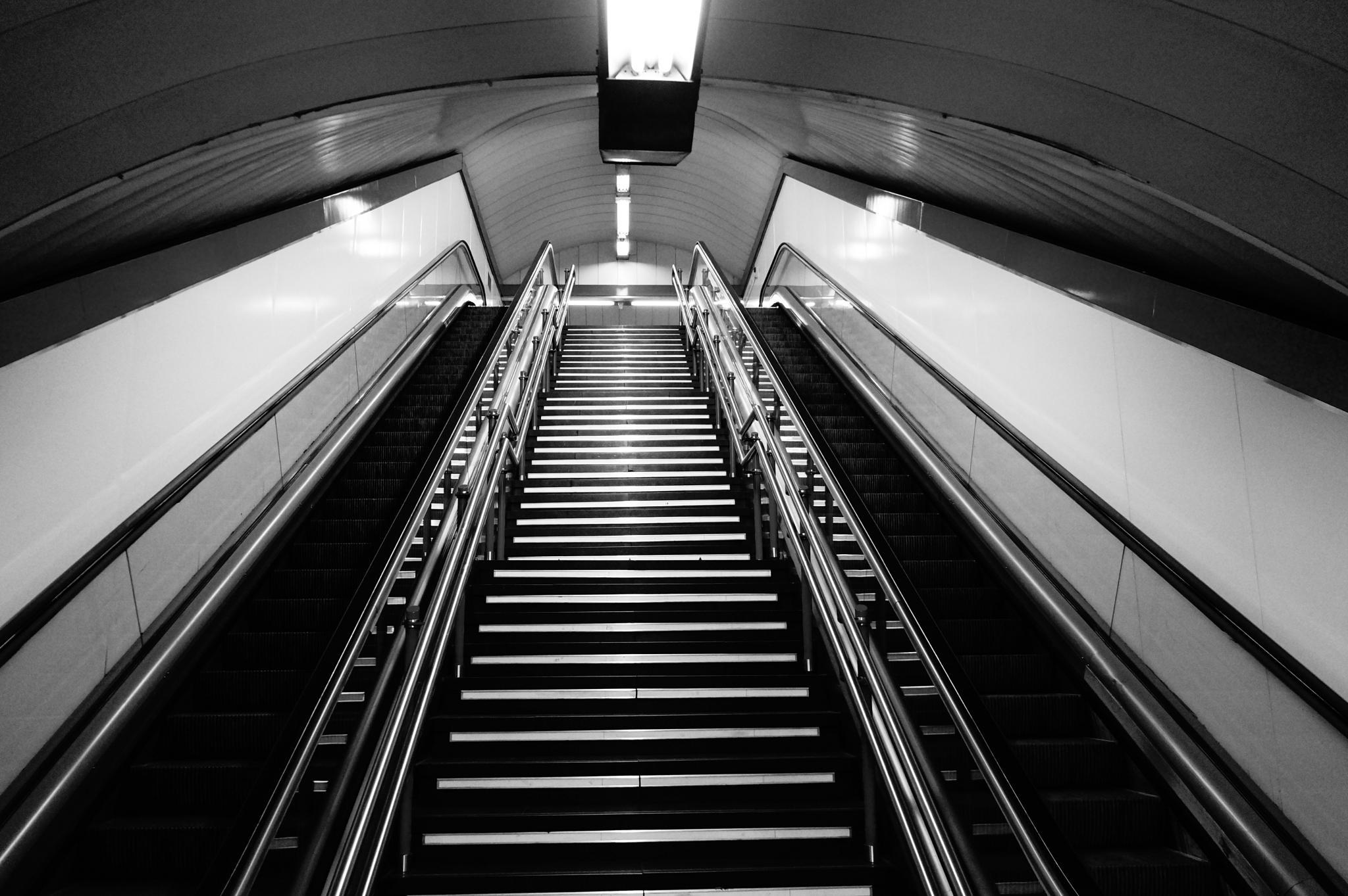 Stairs by Malatesta70
