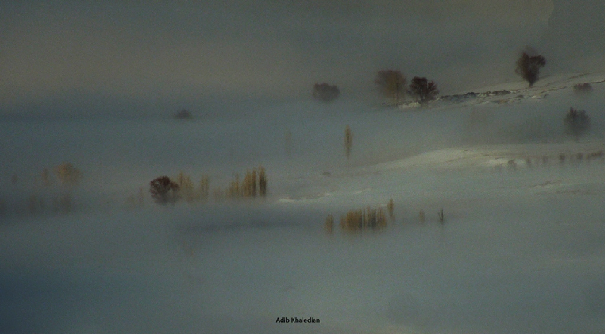 Untitled by Adib Khaledian