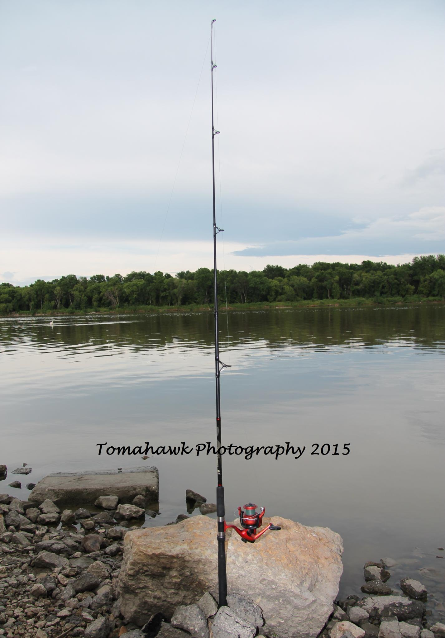 Fishing Rod by Thomas Mah