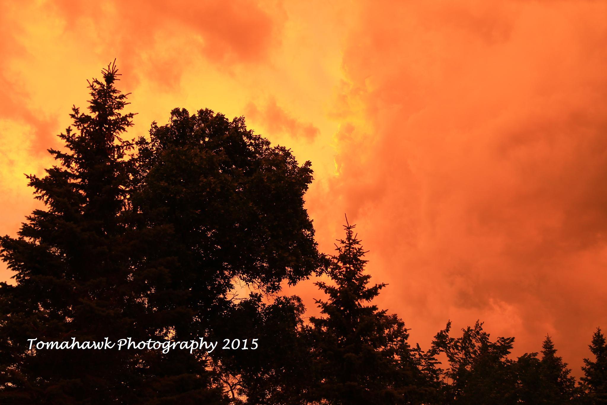 Orange Cloud Sunset by Thomas Mah