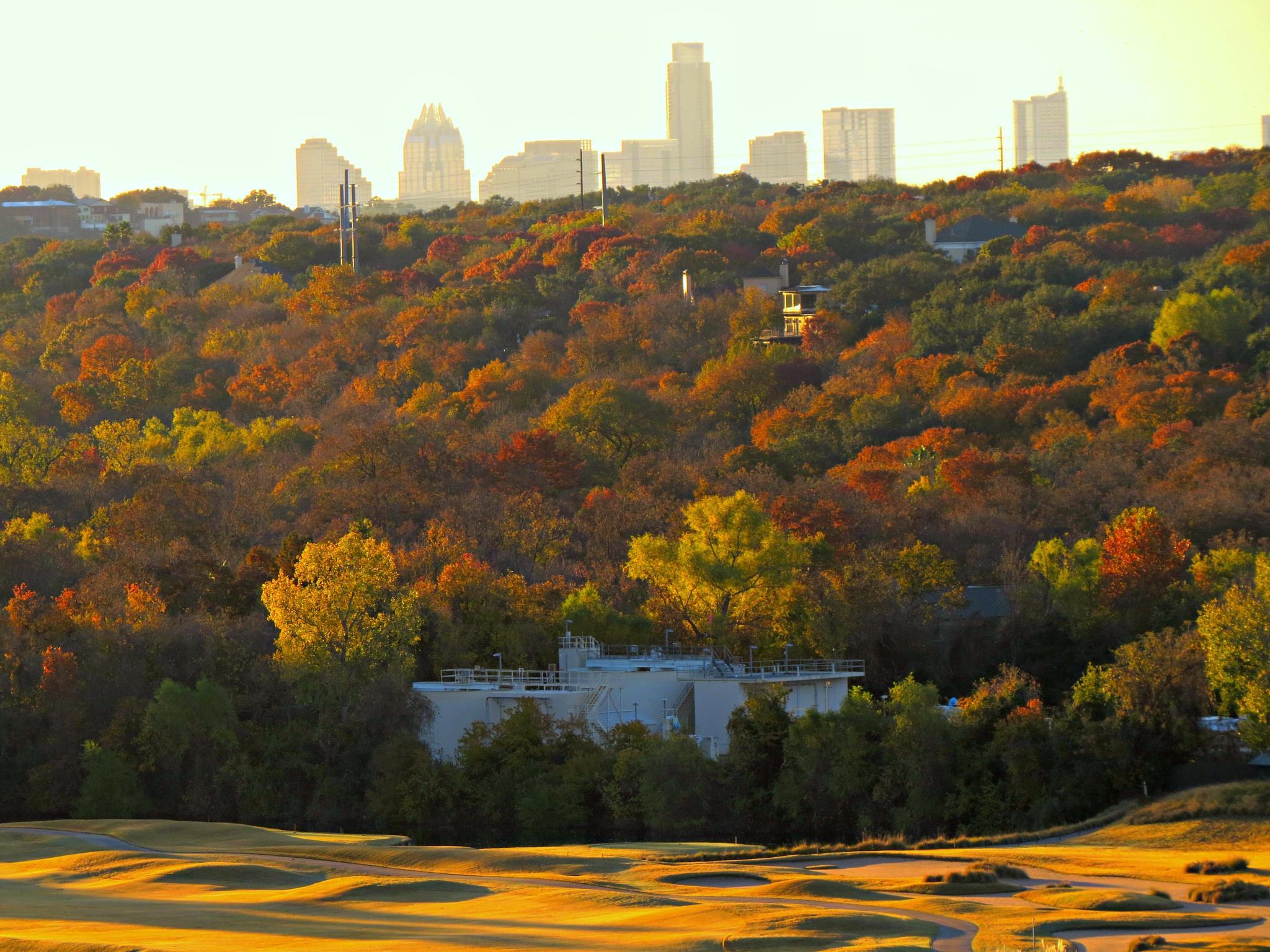 Downtown Austin by jerrym
