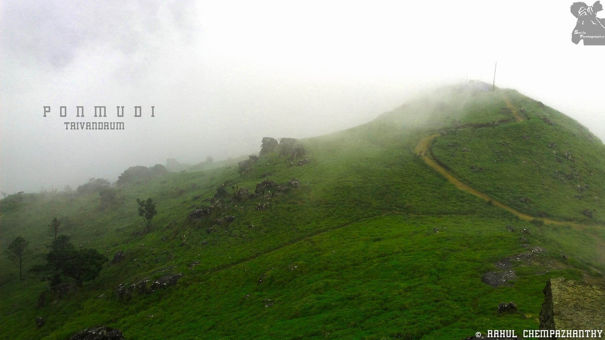 Photo in Nature #ponmudi #tourisam #kerala