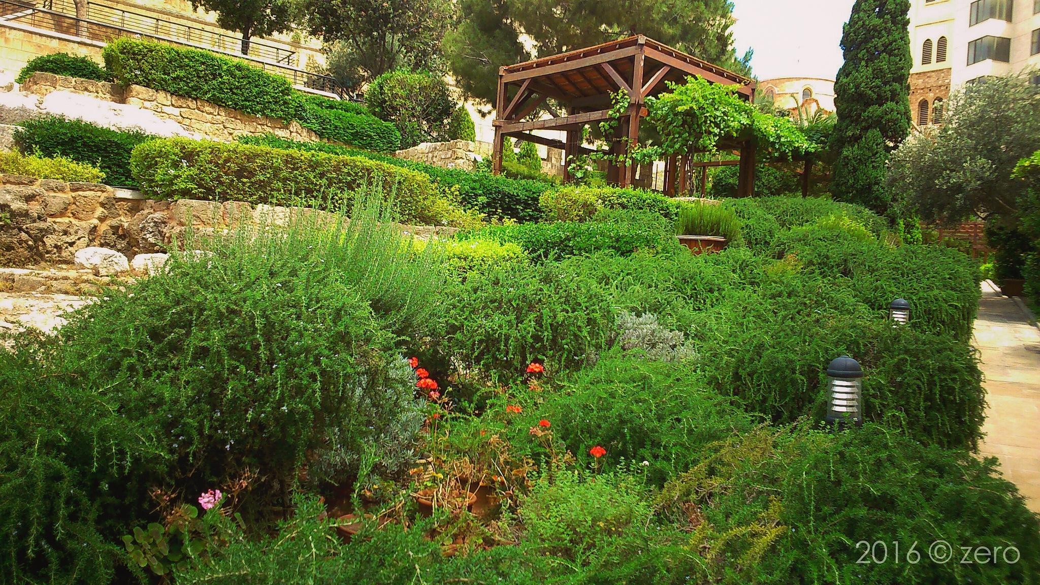 A beautiful garden  by llzeroll