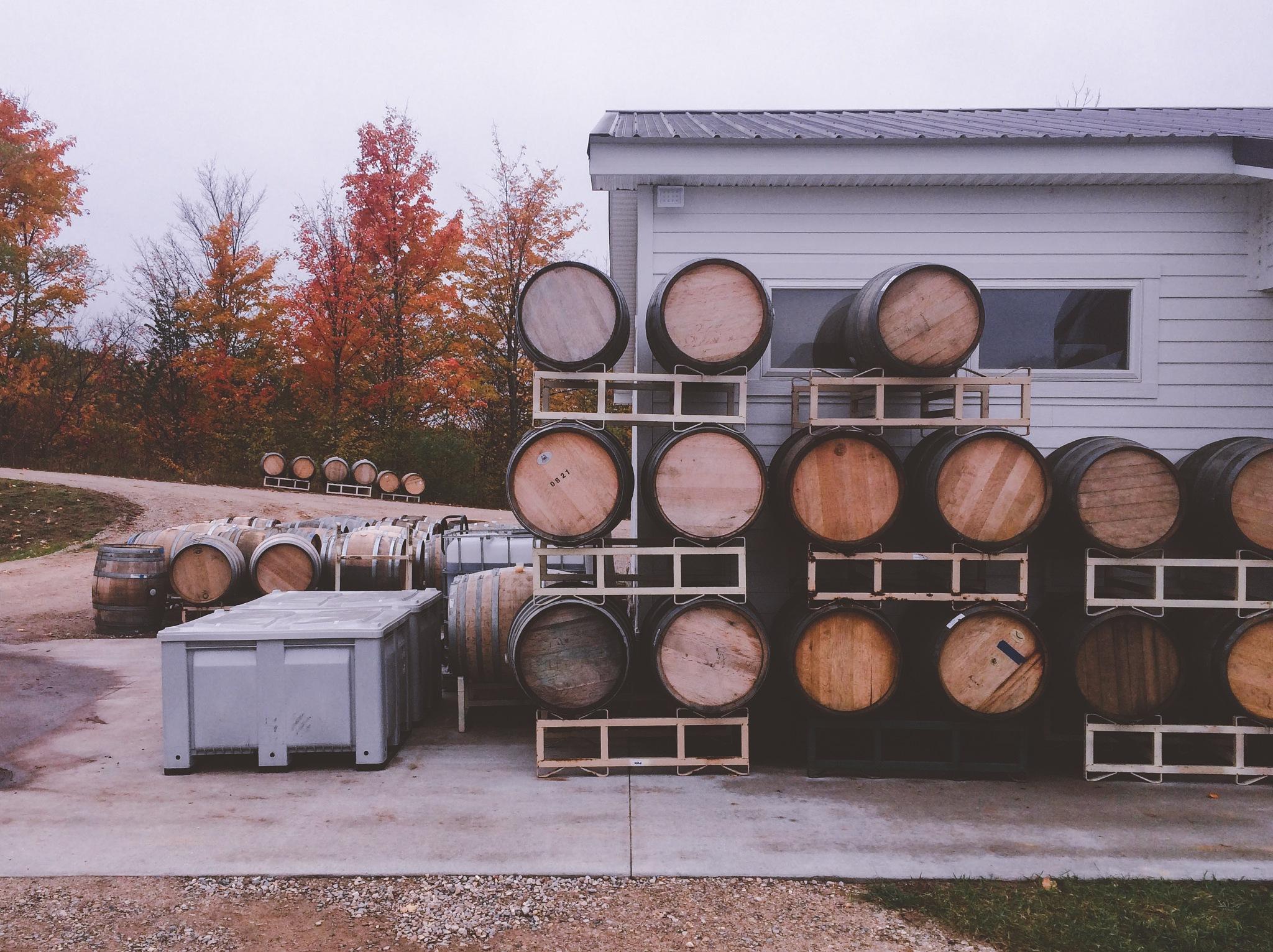 Wine Barrels by darumacreative