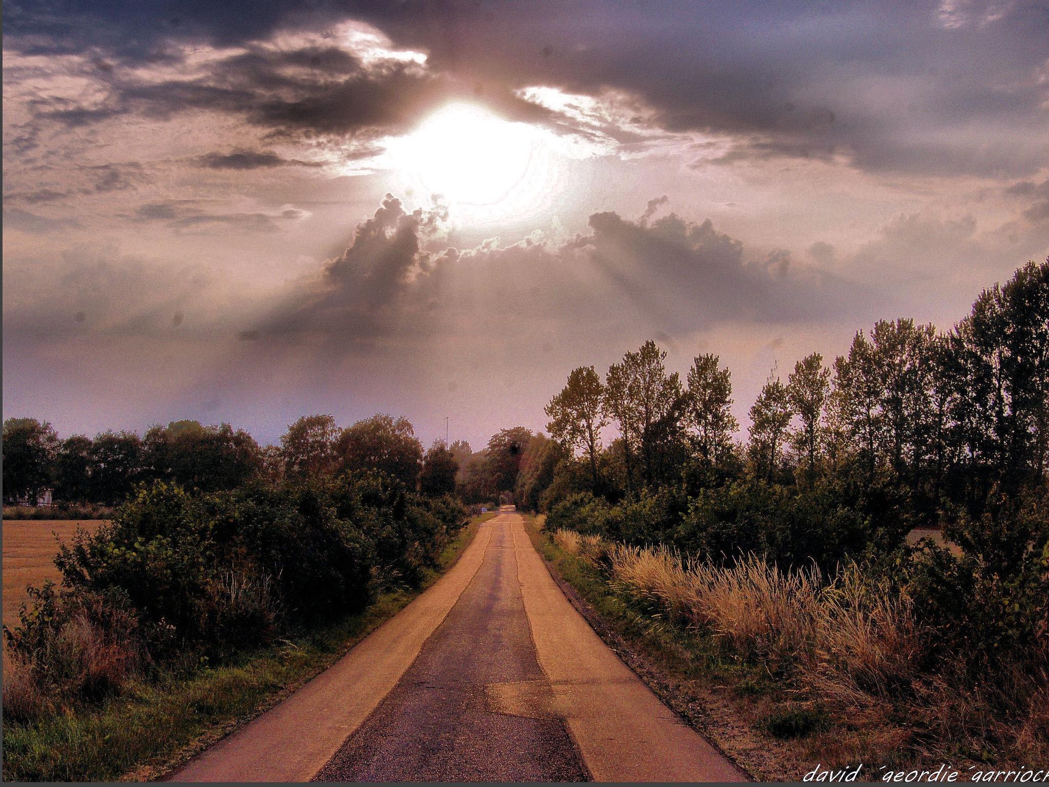 BUTTERUP MAIN ROAD by davidgeordiegarriock
