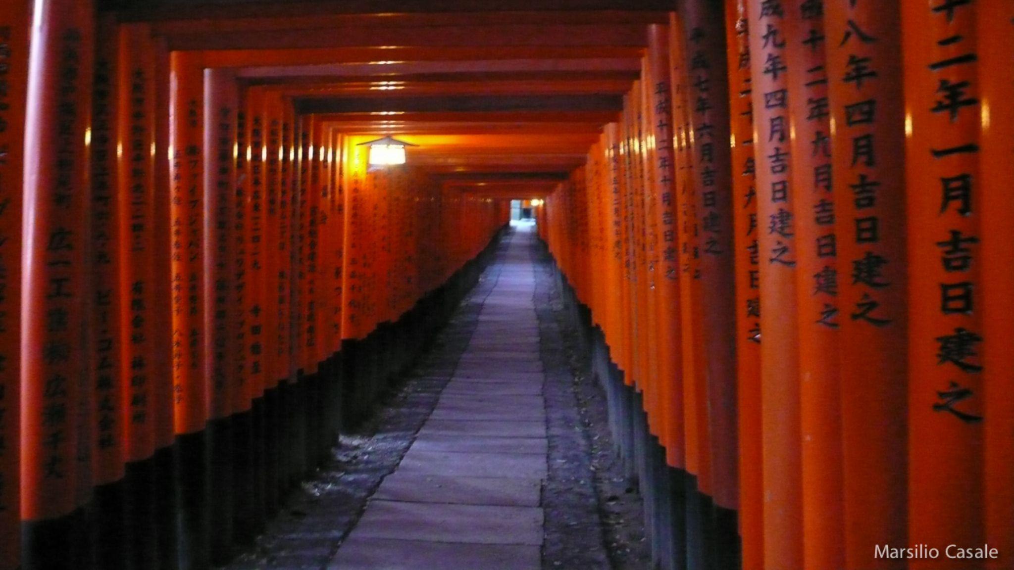 Fushimi Inari Shrine by Marsilio Casale
