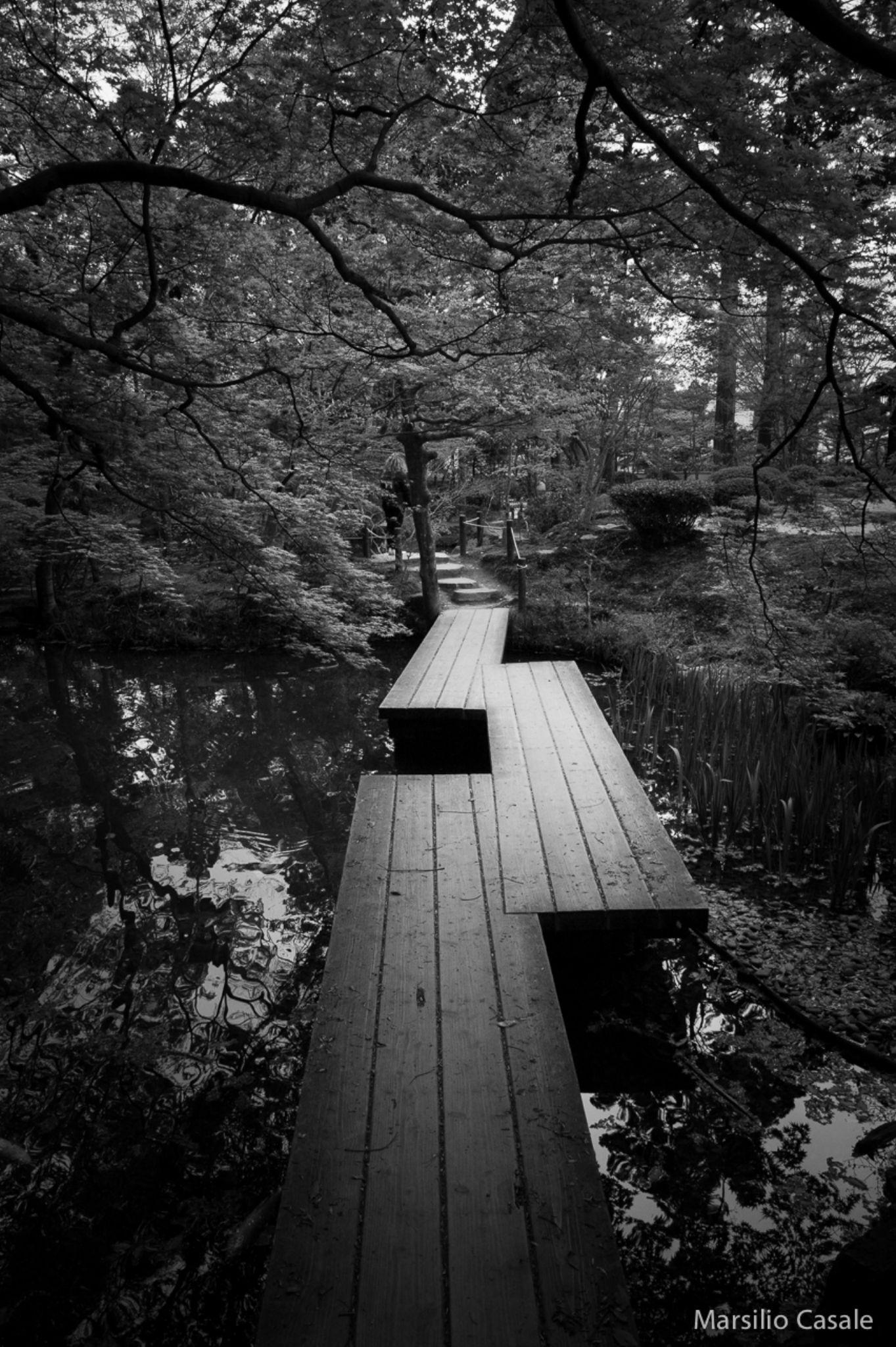Pond passage by Marsilio Casale