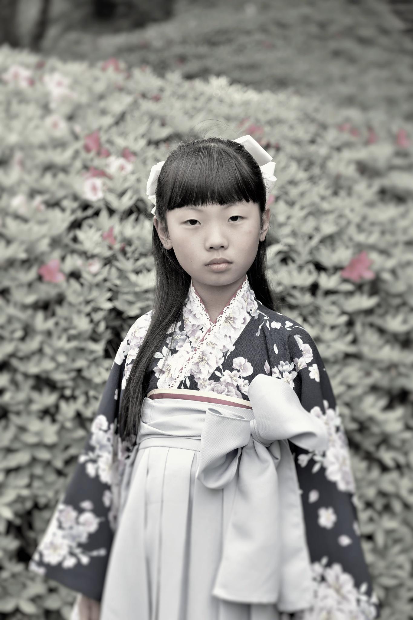 七五三:celebration of child's third fifth and seventh years by utsushiyasakura