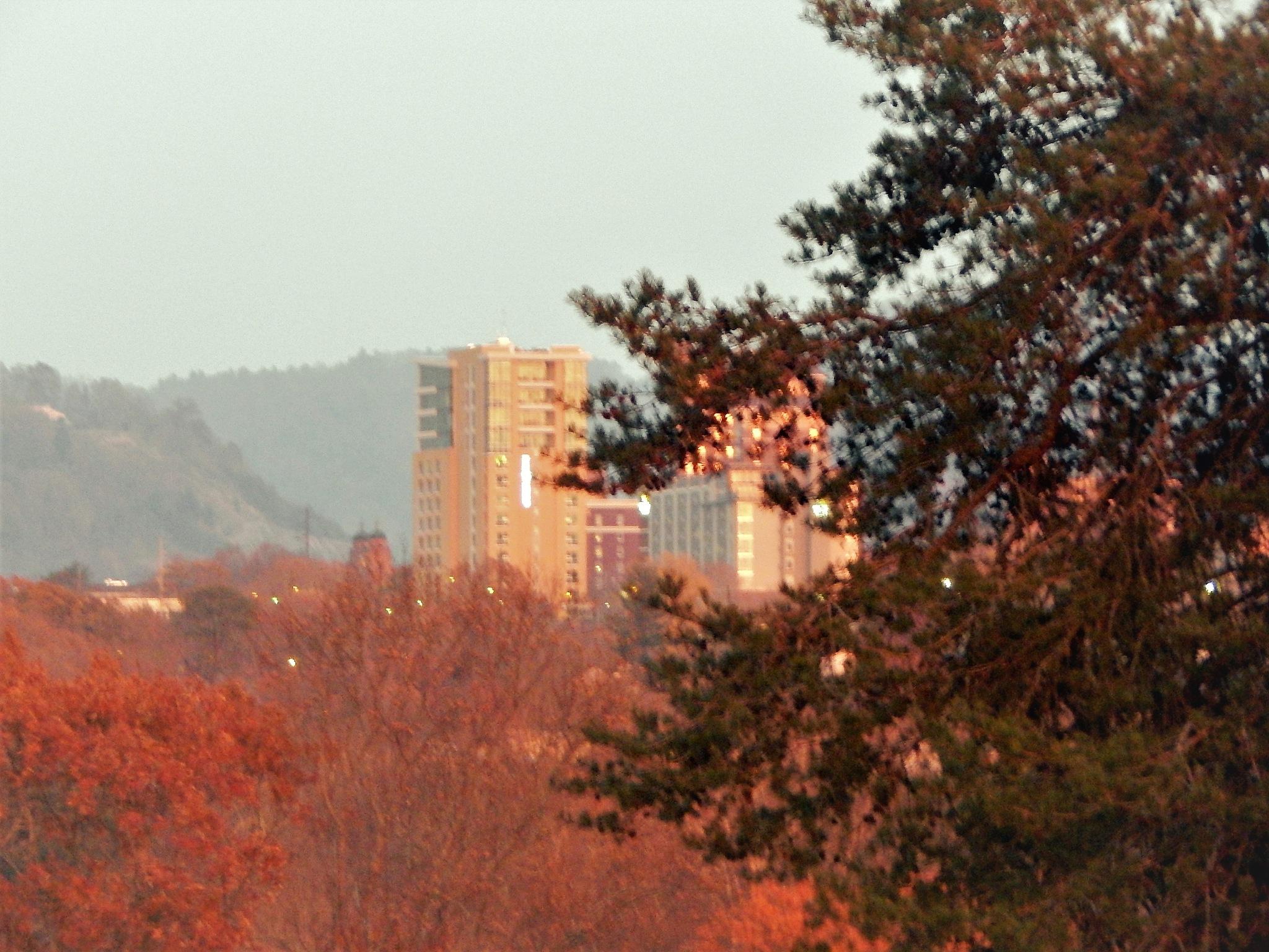 Asheville at Dusk by B Grant Art