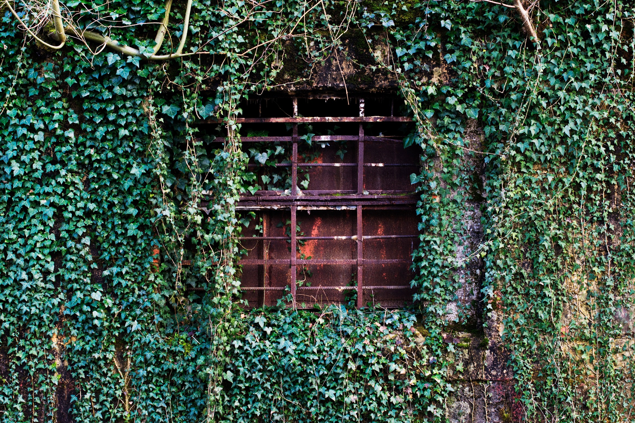 Blockhaus window by ludosauvage
