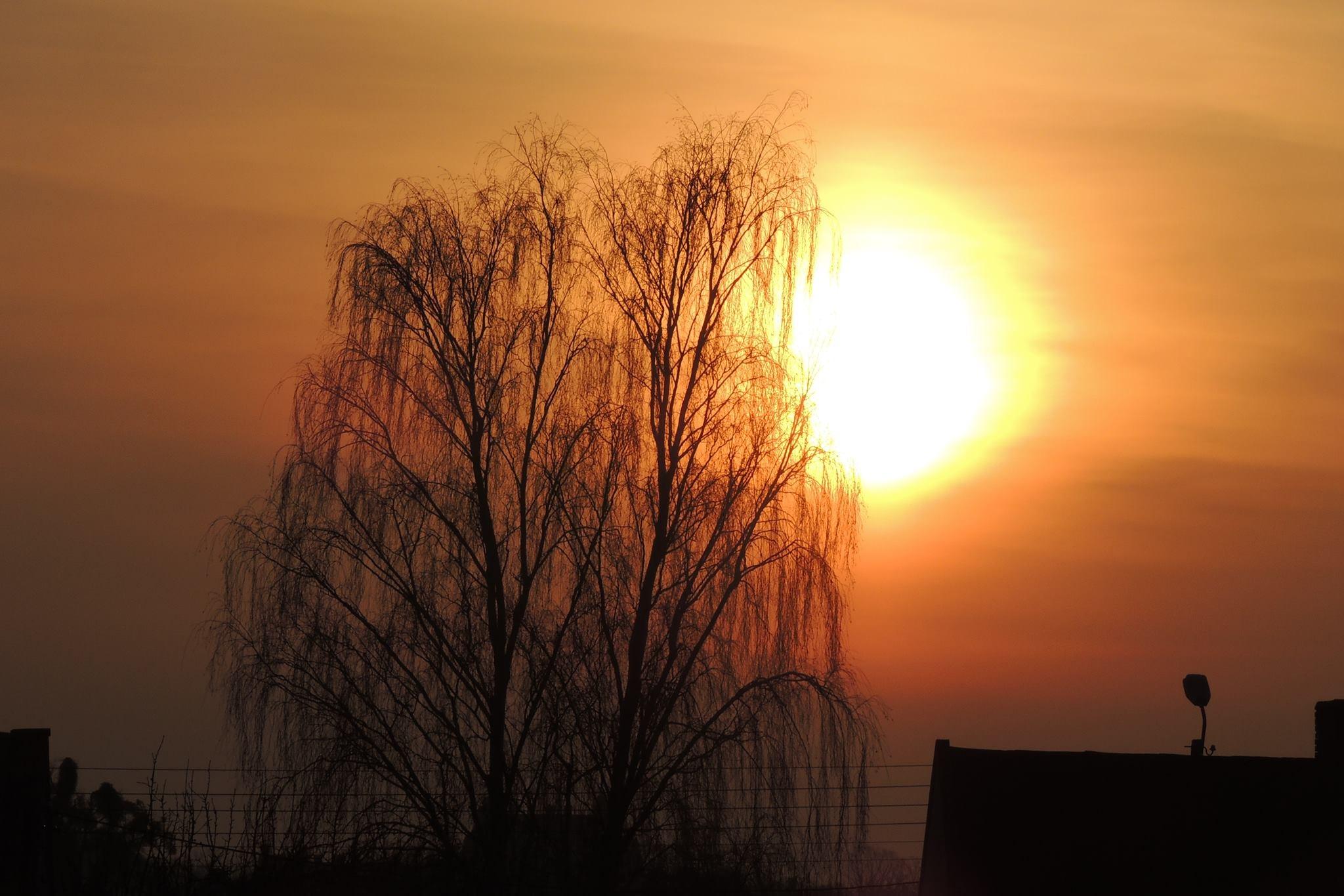 sunrise by B Tessa Marcinkowska