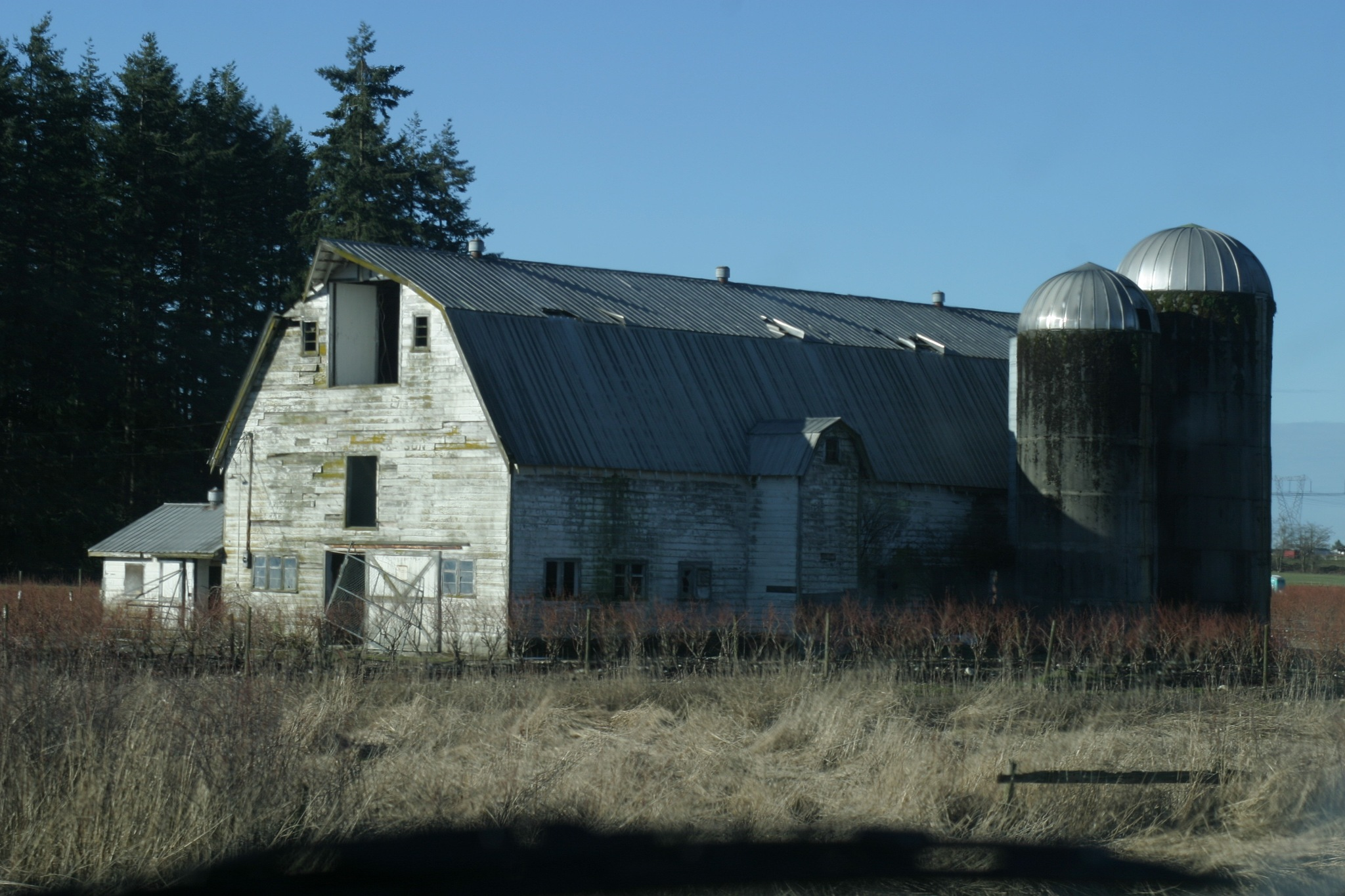 Old Dairy Barn. by Henry Wall