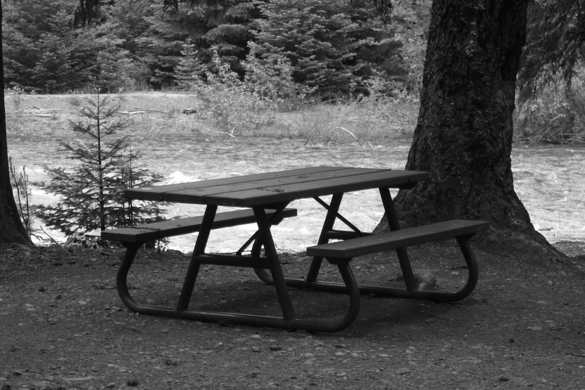 Picnic Table. by Henry Wall
