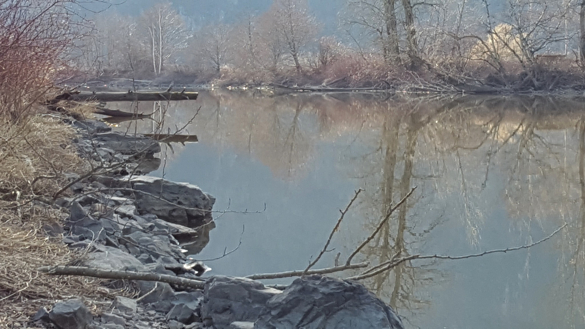 Sumas River by Henry Wall