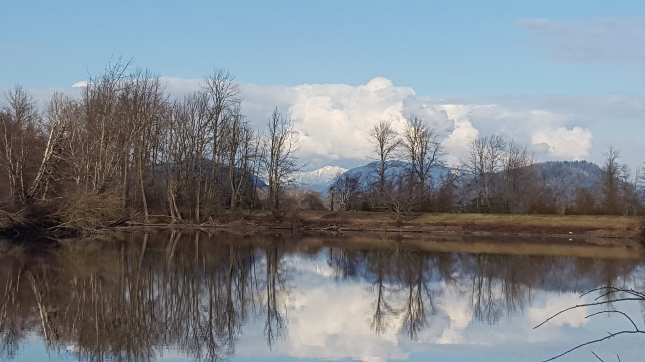 Sumas River. by Henry Wall