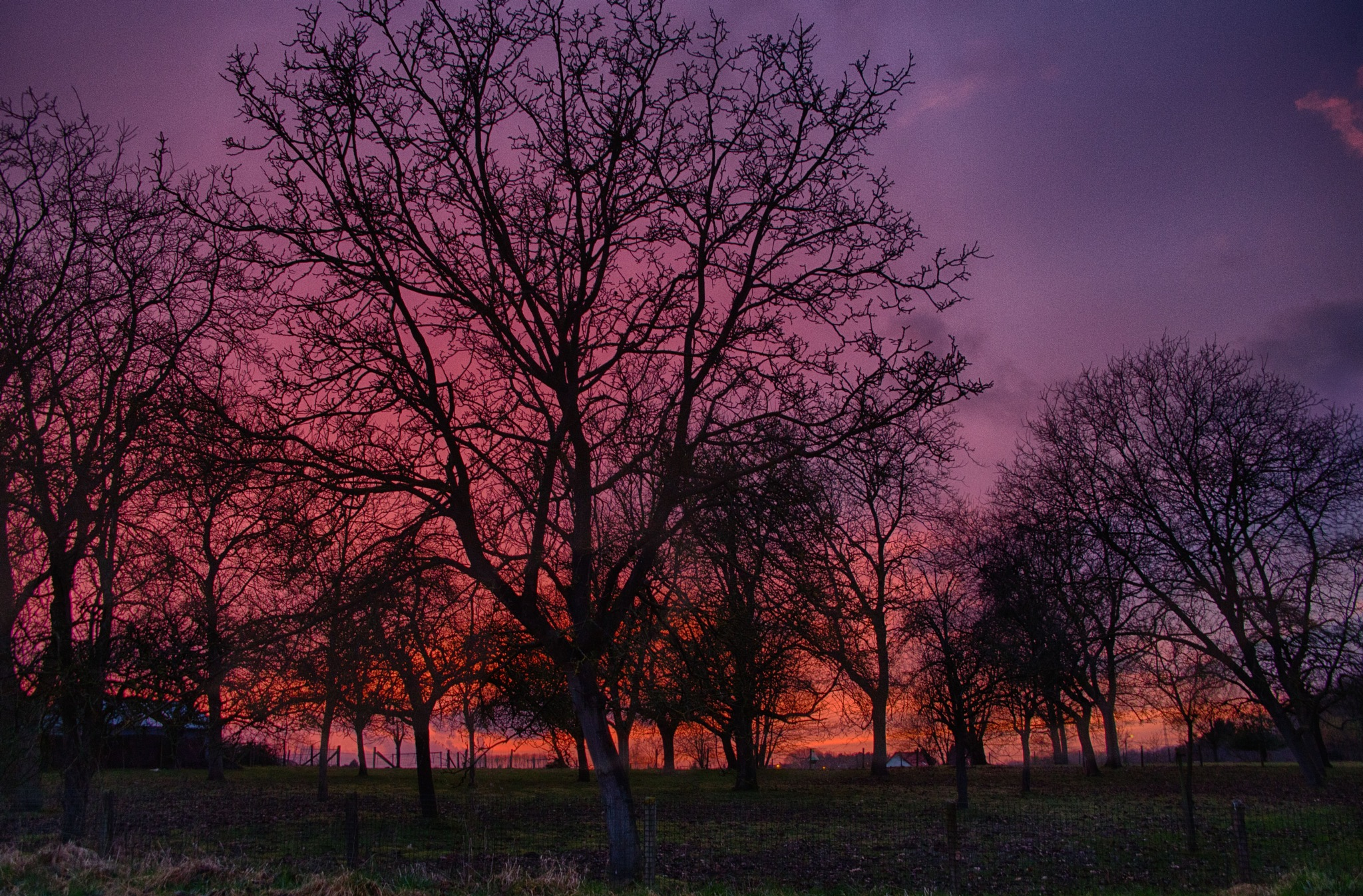 Red blue sky, just the vieuw from our house ... by Loufotografie