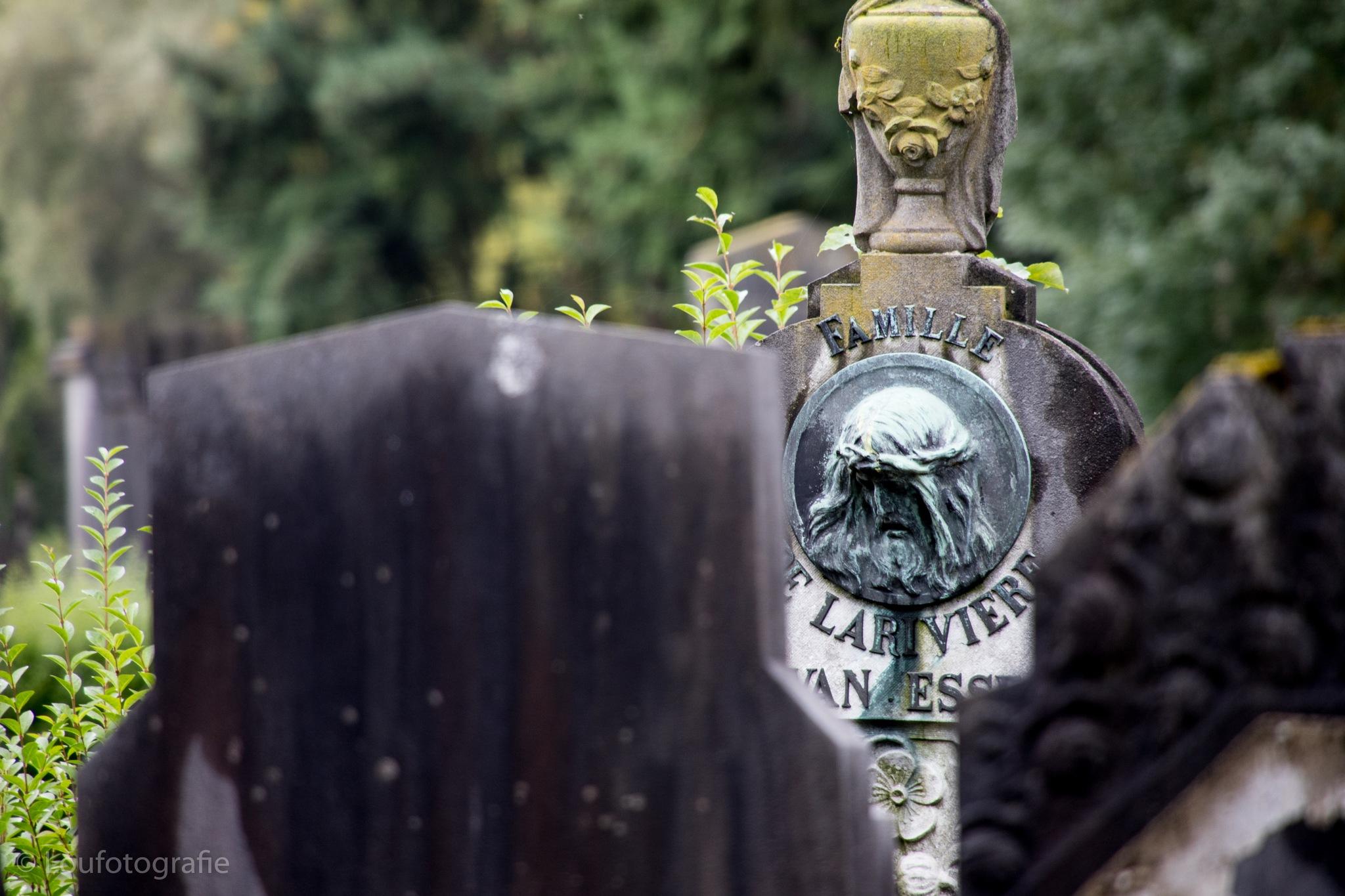 Graveyard Vogelensang Anderlecht  by Loufotografie