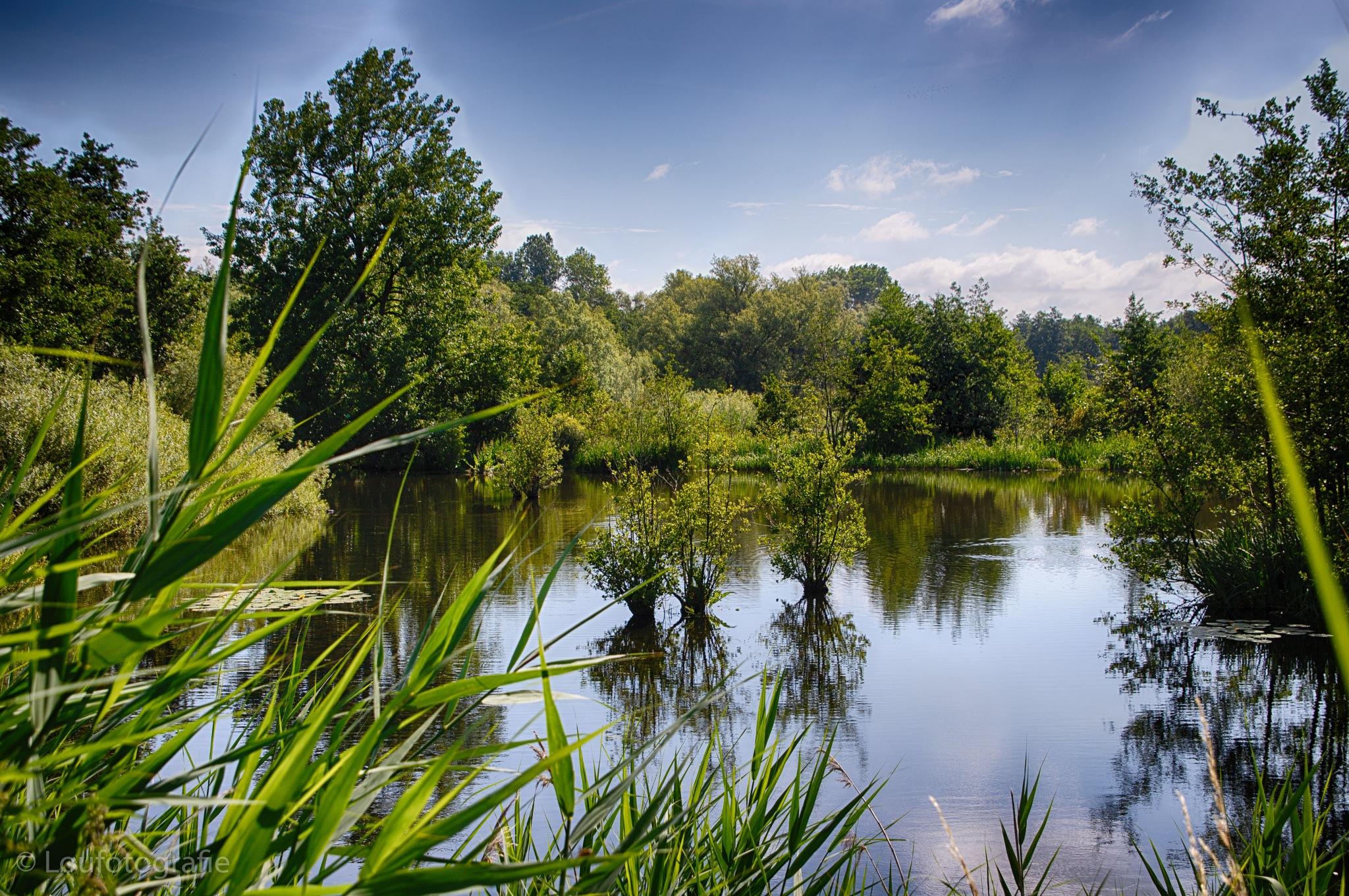 Lokeren natuurgebied by Loufotografie