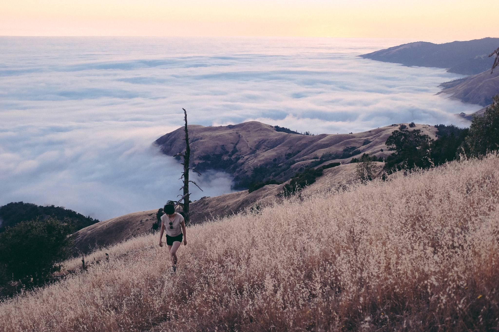 above the clouds in big sur by kappuru