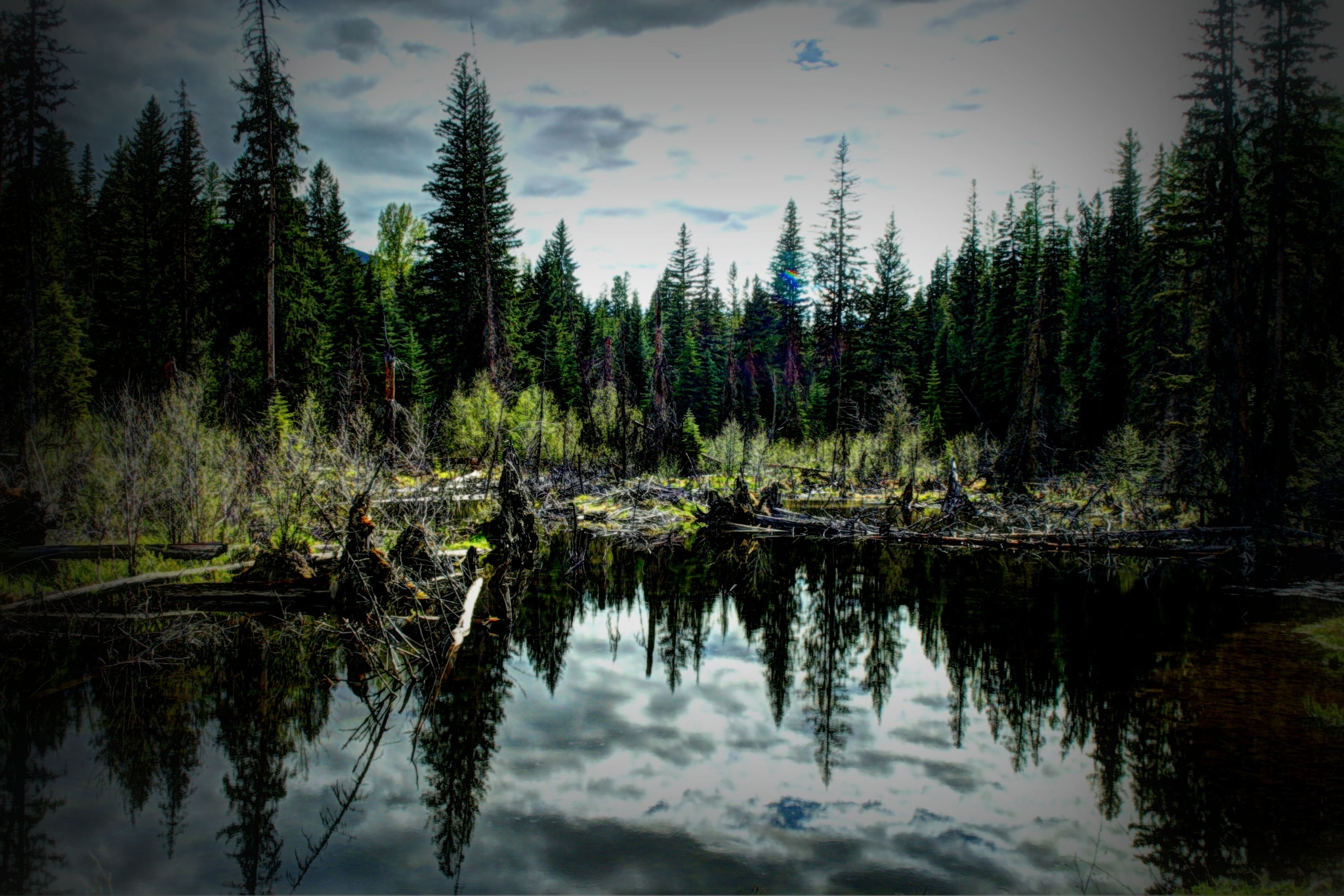 Late day pond HDR by GerryFrederick