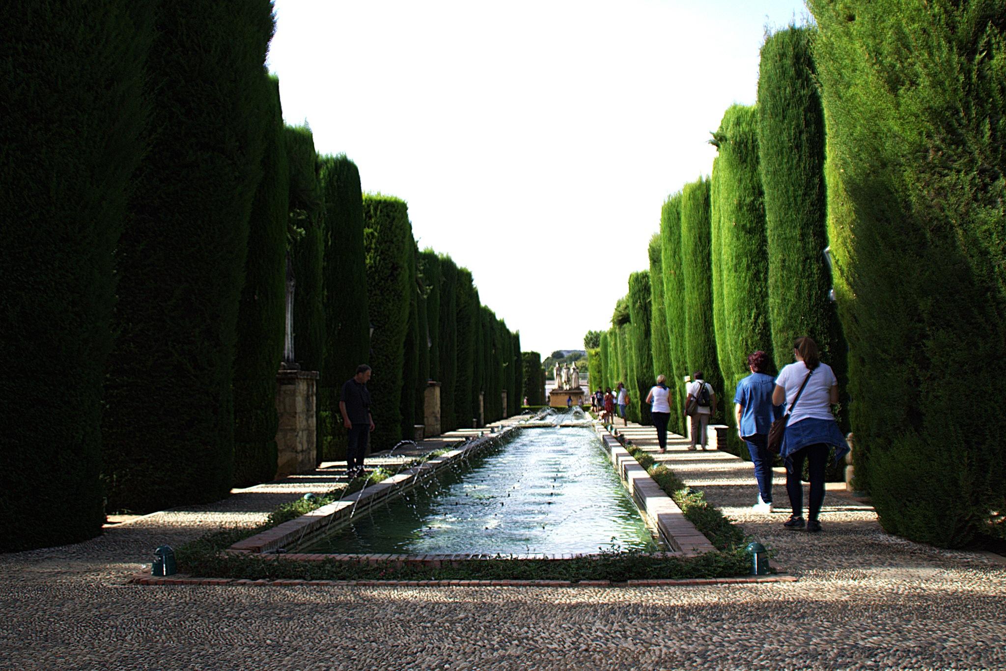 Jardines del Alcázar de los Reyes Cristianos en Córdoba by mmvicent