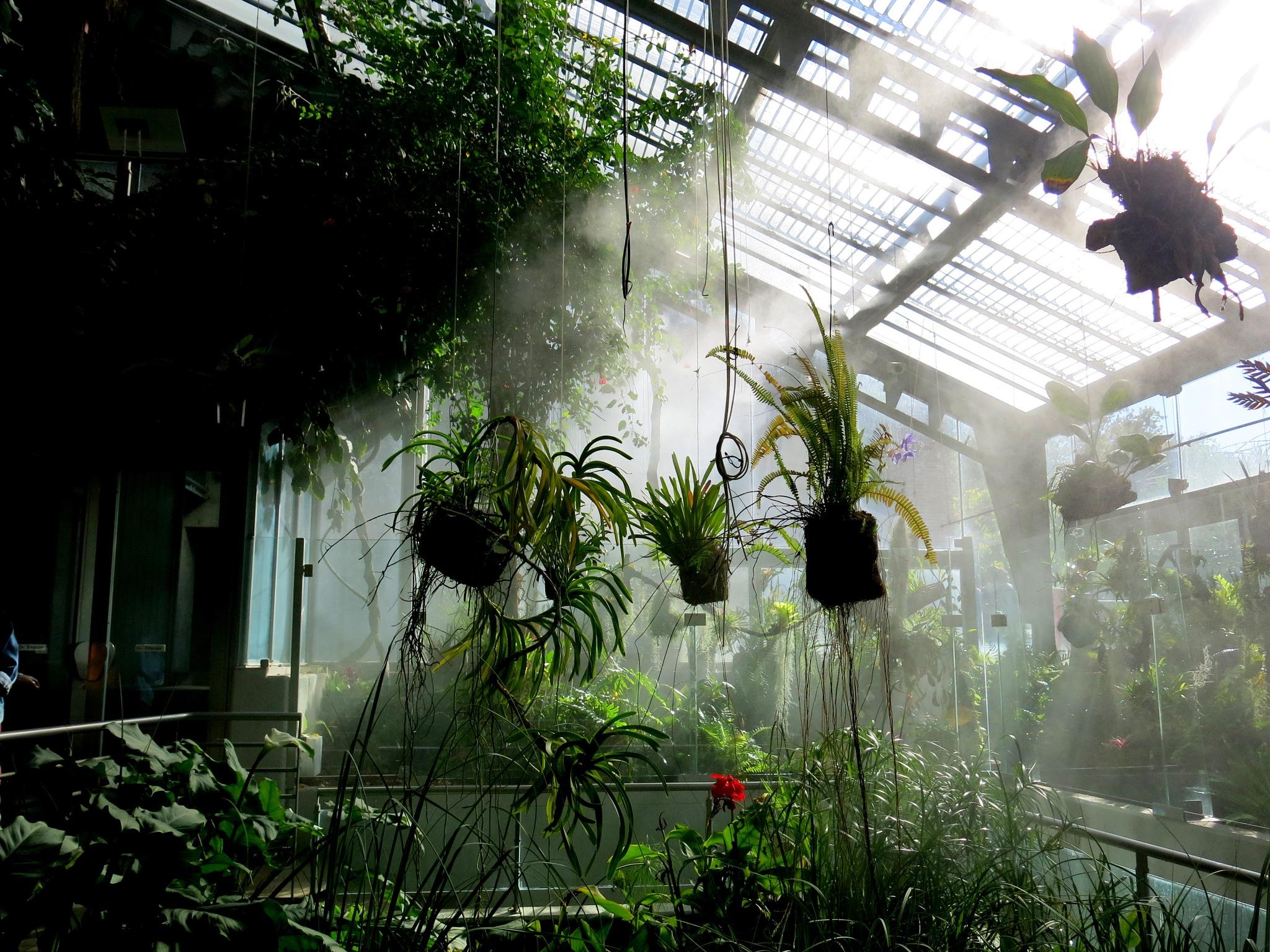 riego en el invernadero by mmvicent