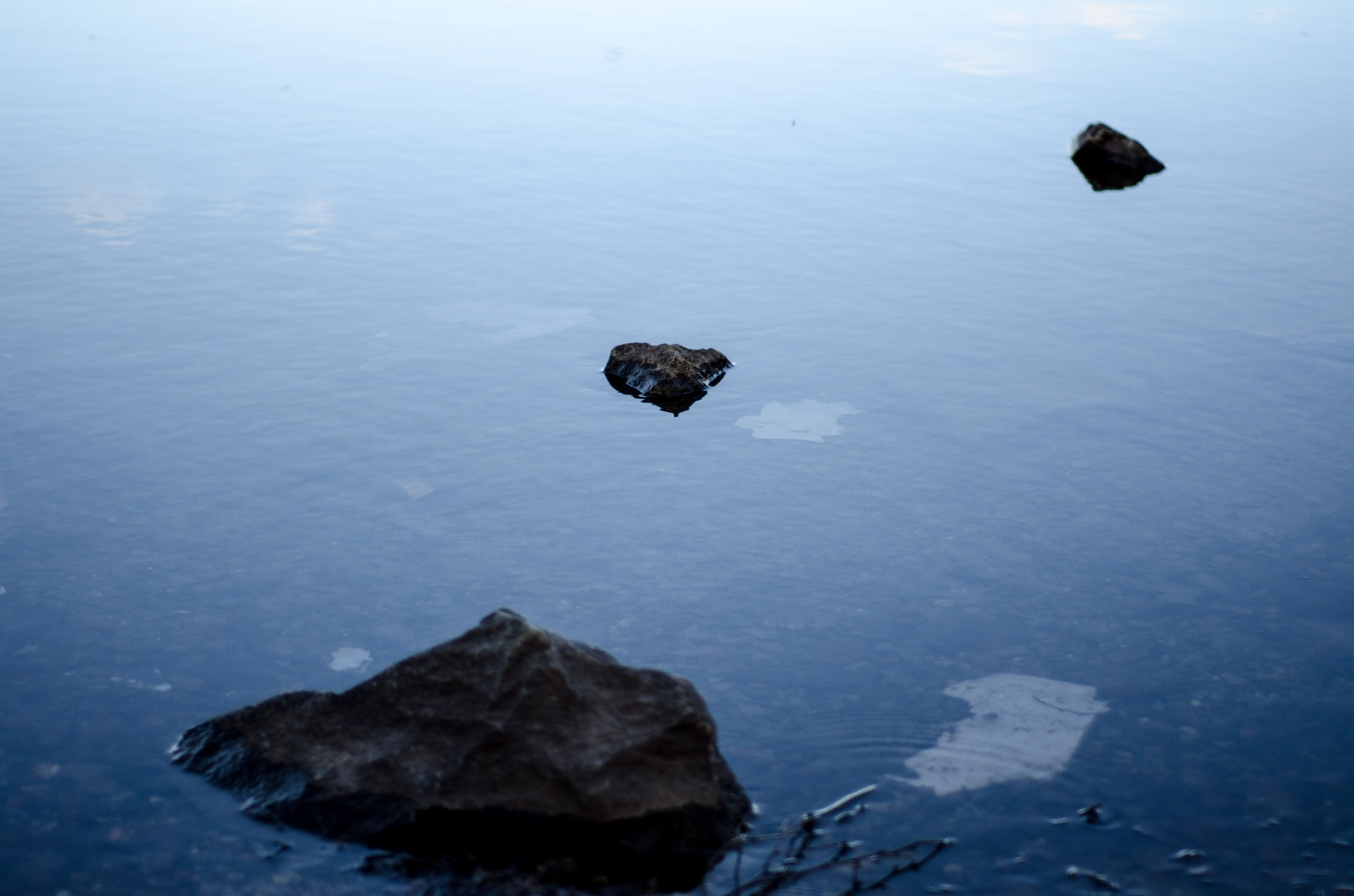 Rocks in the pond by Frederic Paulussen