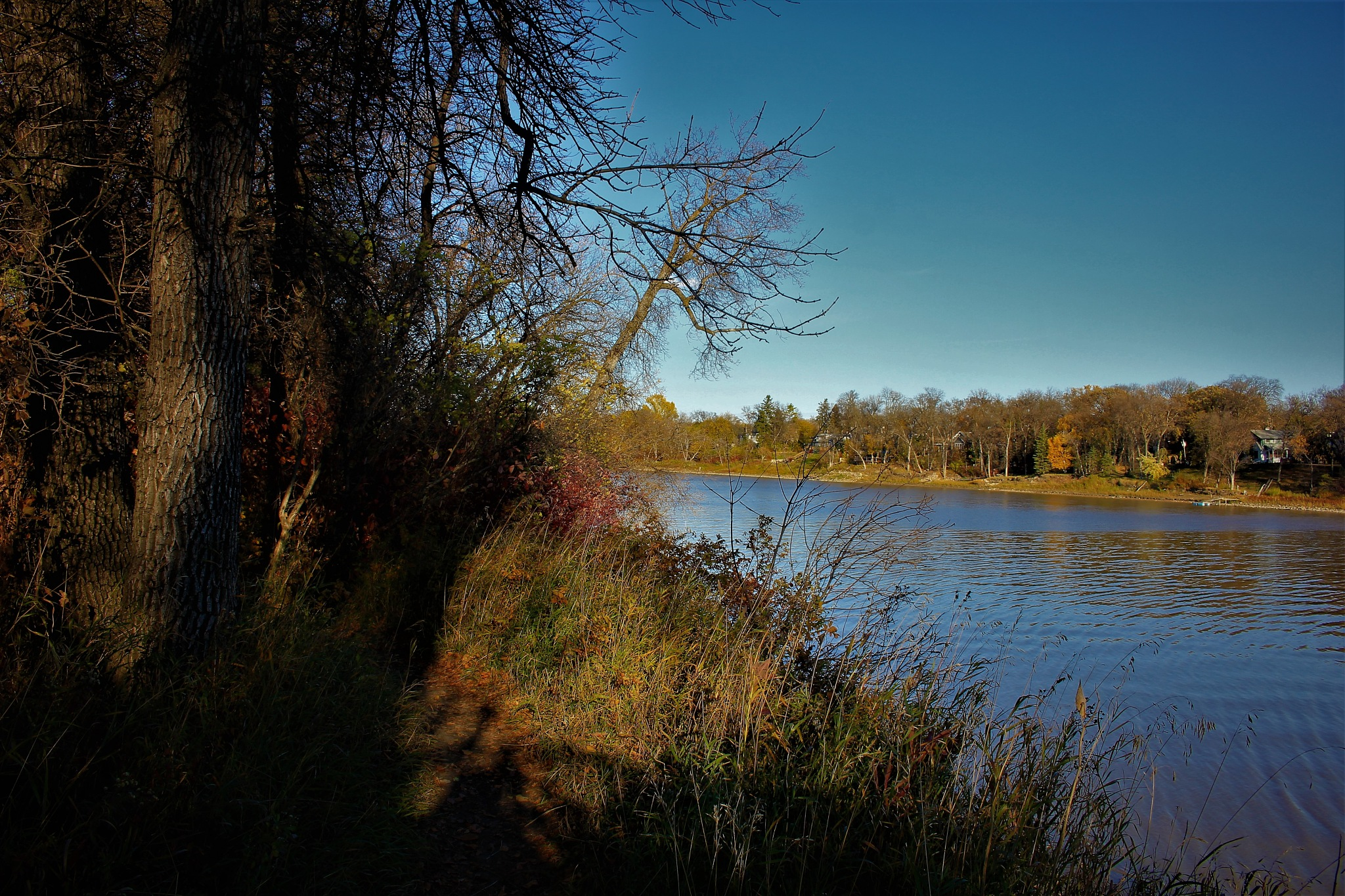 Autumn Along the Red River by David Imrie