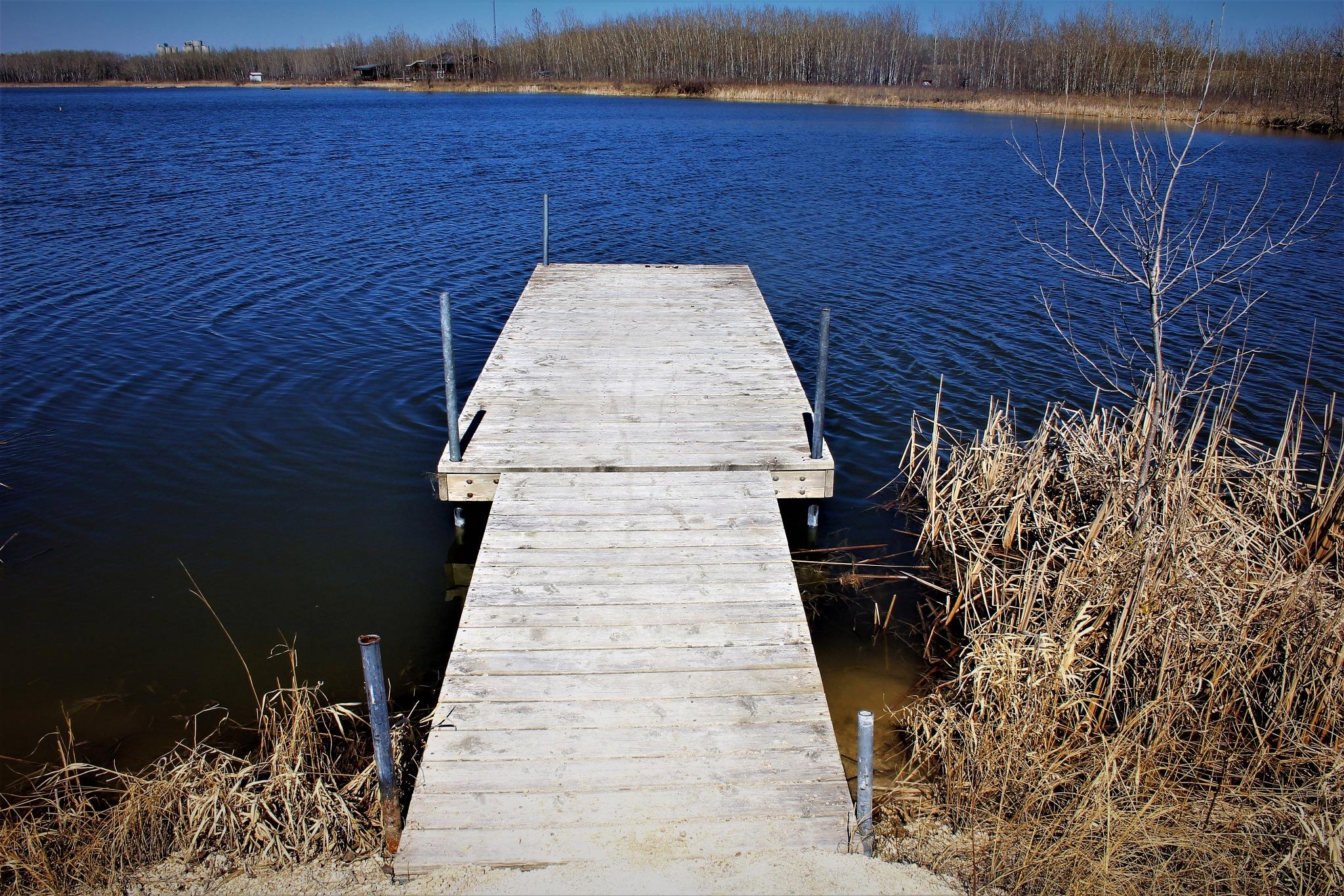 Dock Awaiting Summer  by David Imrie