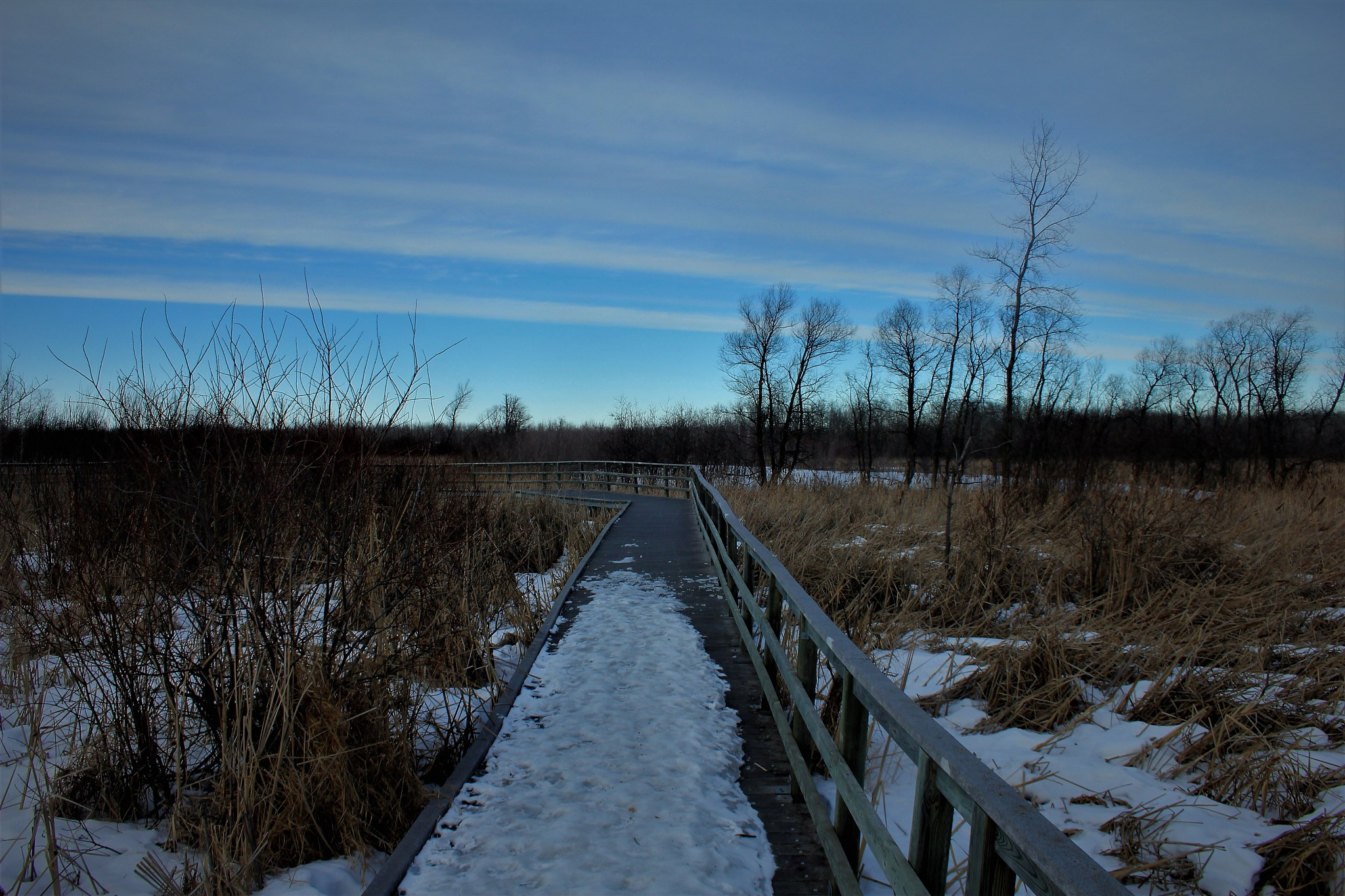 Winter Hike by David Imrie