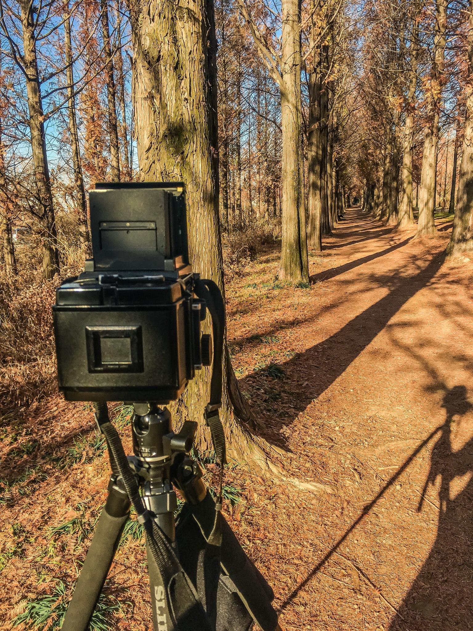 Shooting! by Hansaem Lee