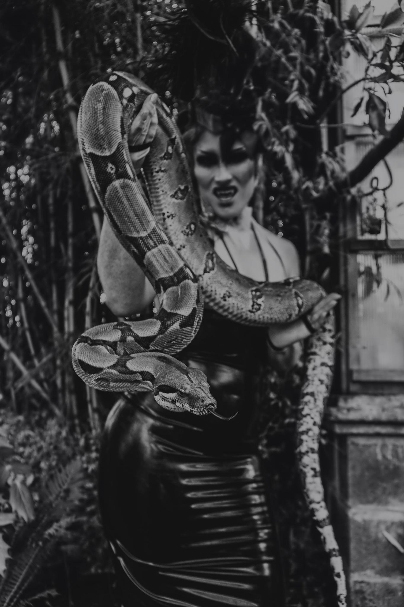 Snake Goddess by LaChele Claypool
