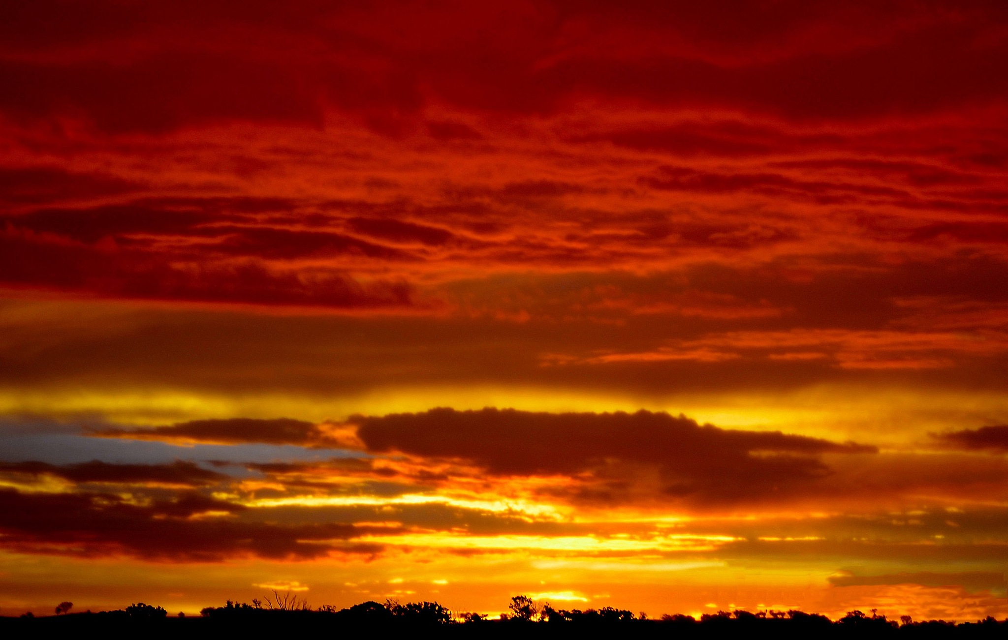 Country Sunset  by Henry Brosius