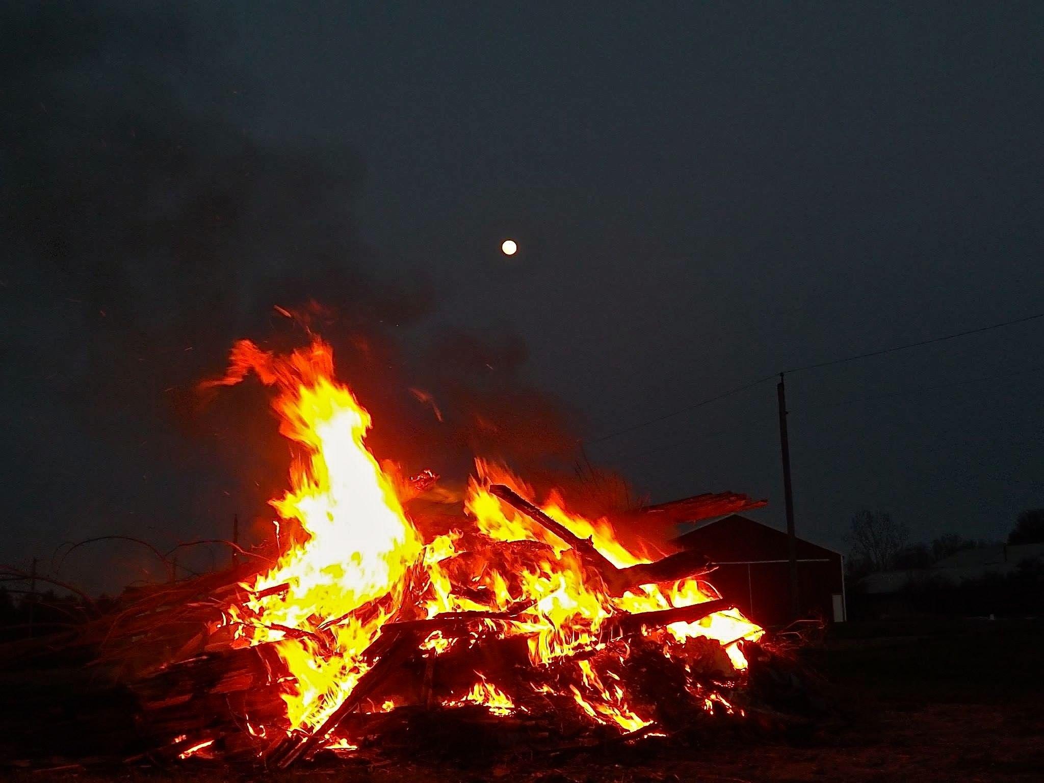 Brigid's Flames, Luna Watching by KimDonavan