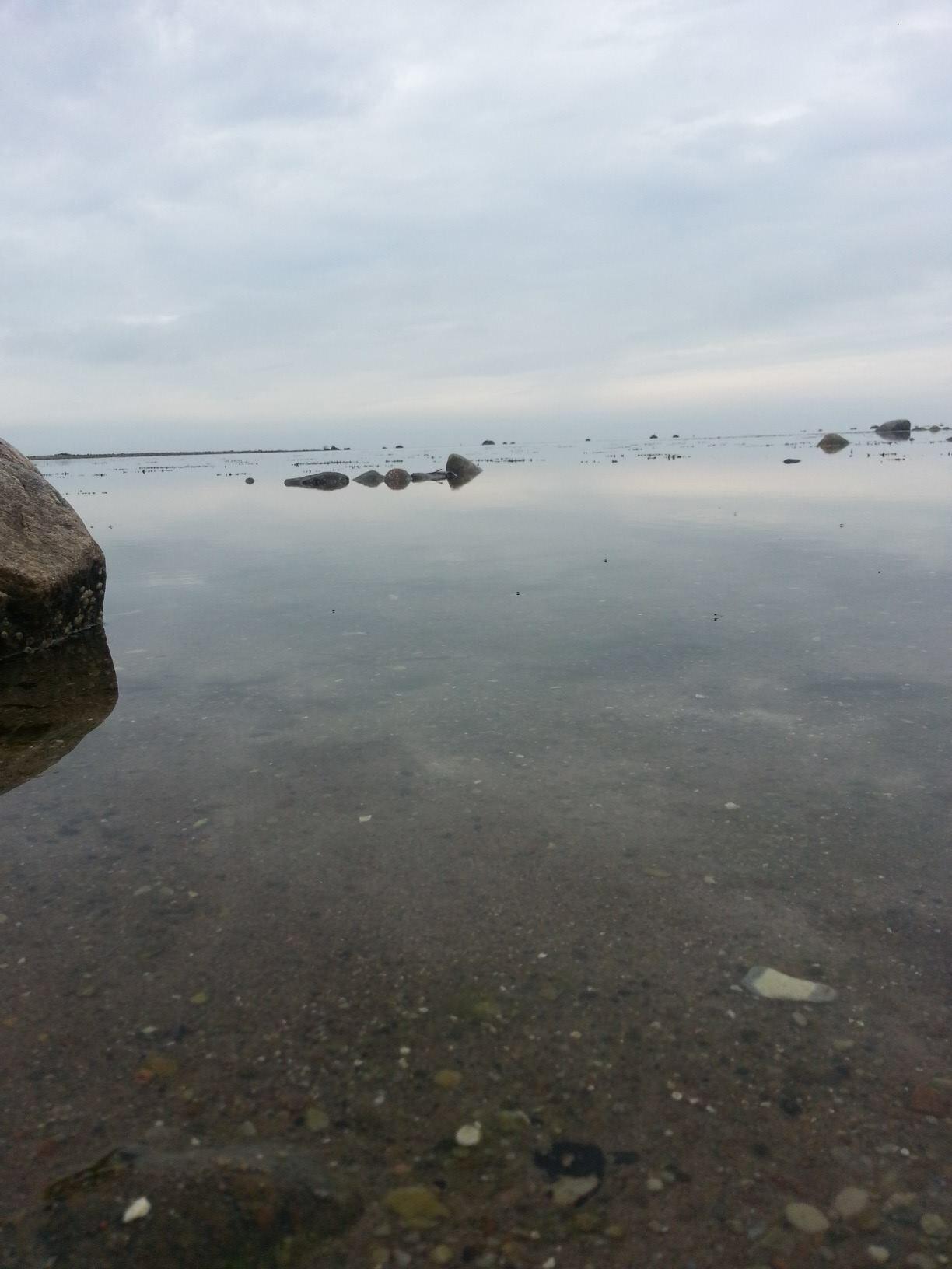Morning on the Beach  by Daniel Svensson