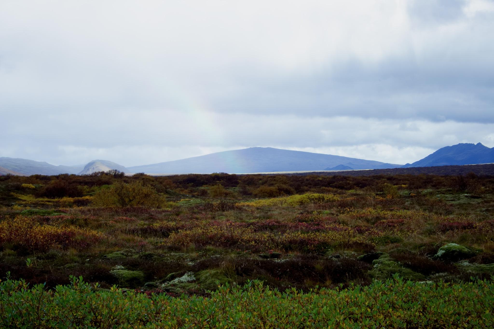 Mt. Skjaldbreiður. by Dadi Gudbjornsson