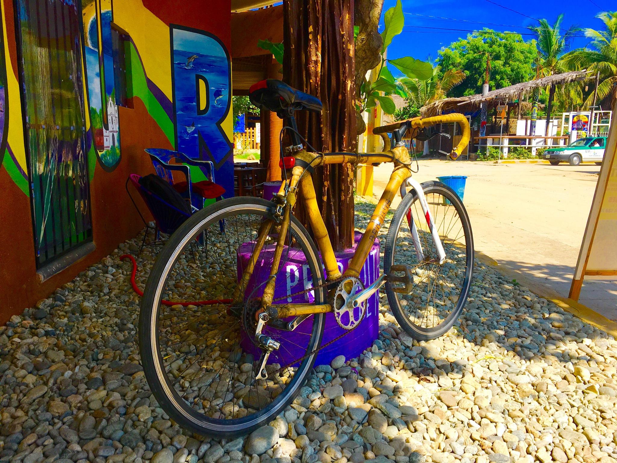 Bamboo bike by mrdanvanduren