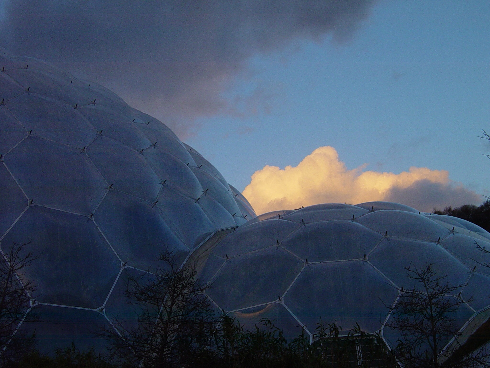 The Eden Project UK - Tropical gardens within the domes by Steven James Homewood