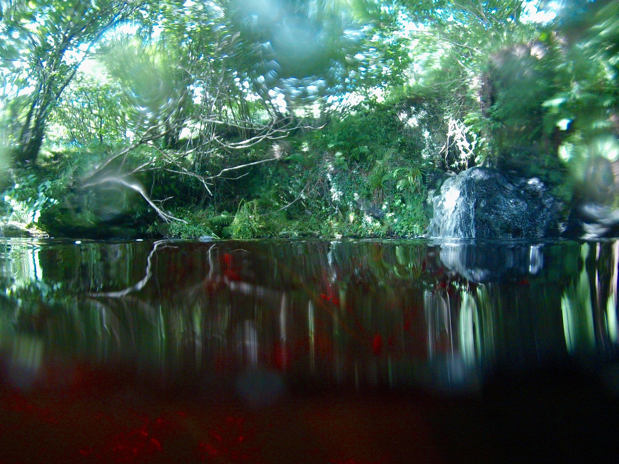 One more look at thr mythical Ruby Pool... by Steven James Homewood