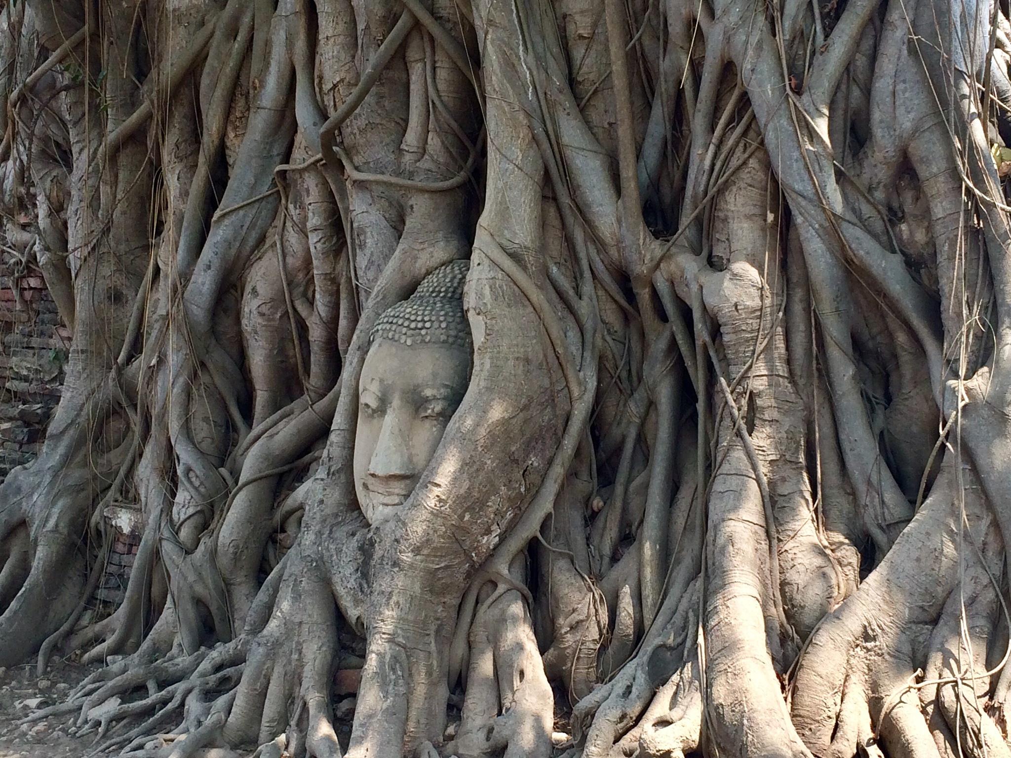 Ayutthaya, Thailand  by Illka Gobius