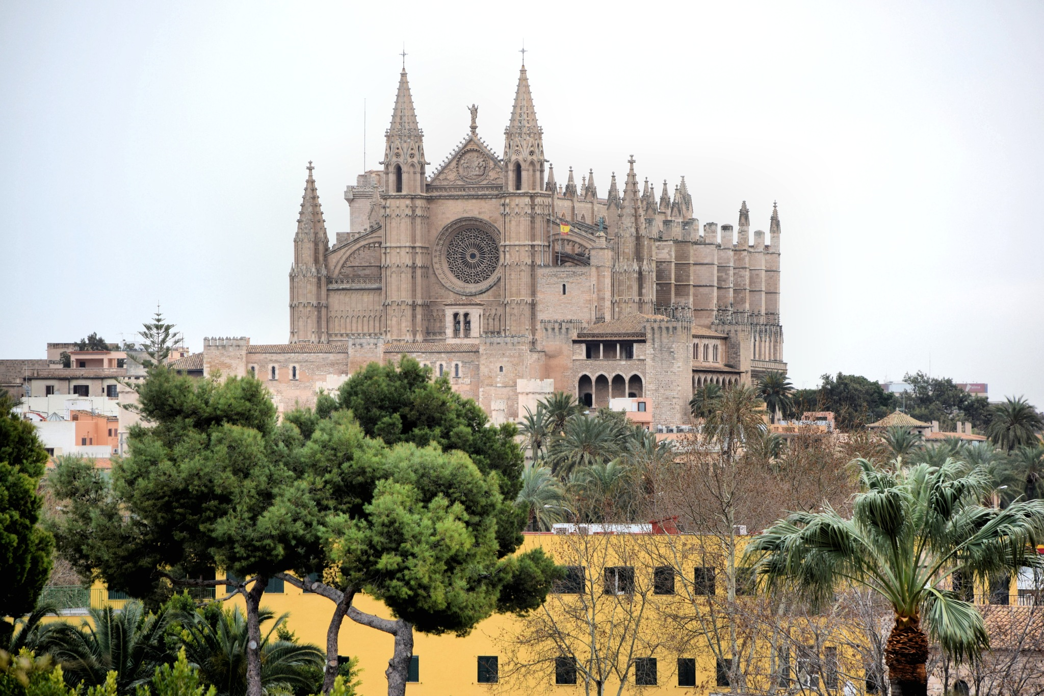 Palma Cathedral by Anker Petersen