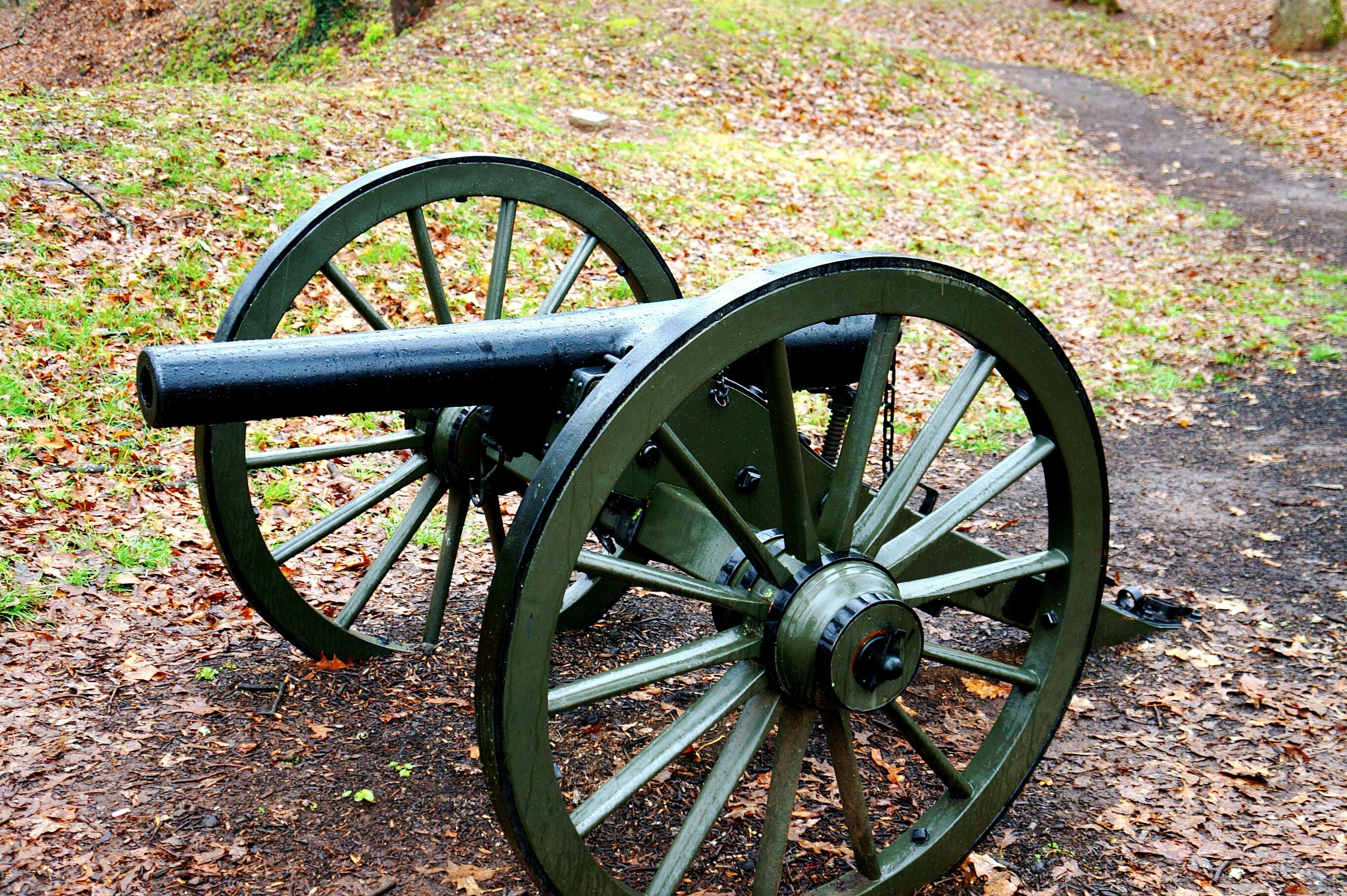 Cannon. by Paul Hopson