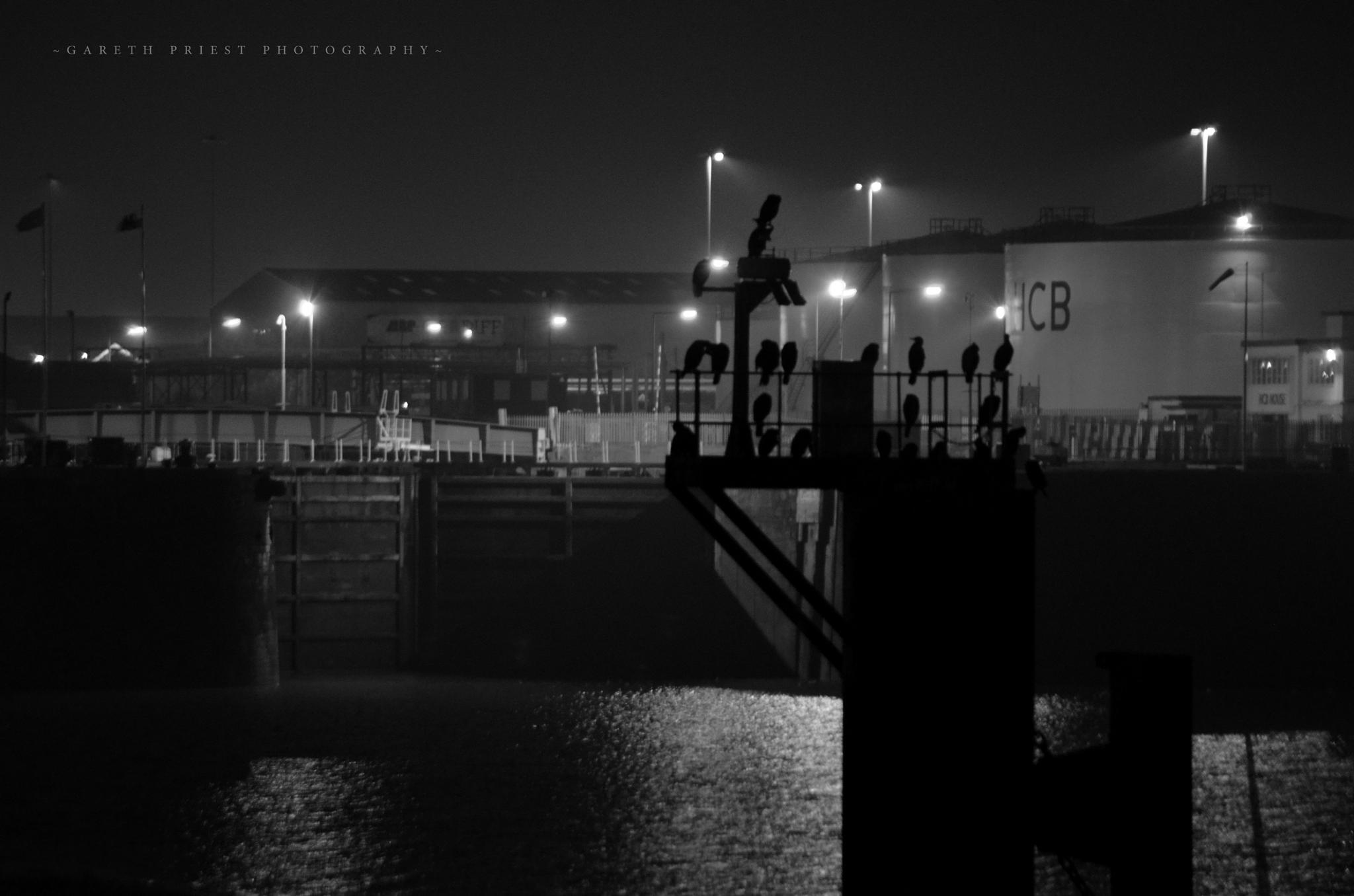 Photo in Black and White #black and white #silhouette #landscape #docks #bay #birds #night #mood #atmosphere #mysterious #dark #light #sea #creative #experimental #inspiration #art #time #moment #capture #concept #composition #contrast #tones #shadow #shade #life #cardiff #penarth