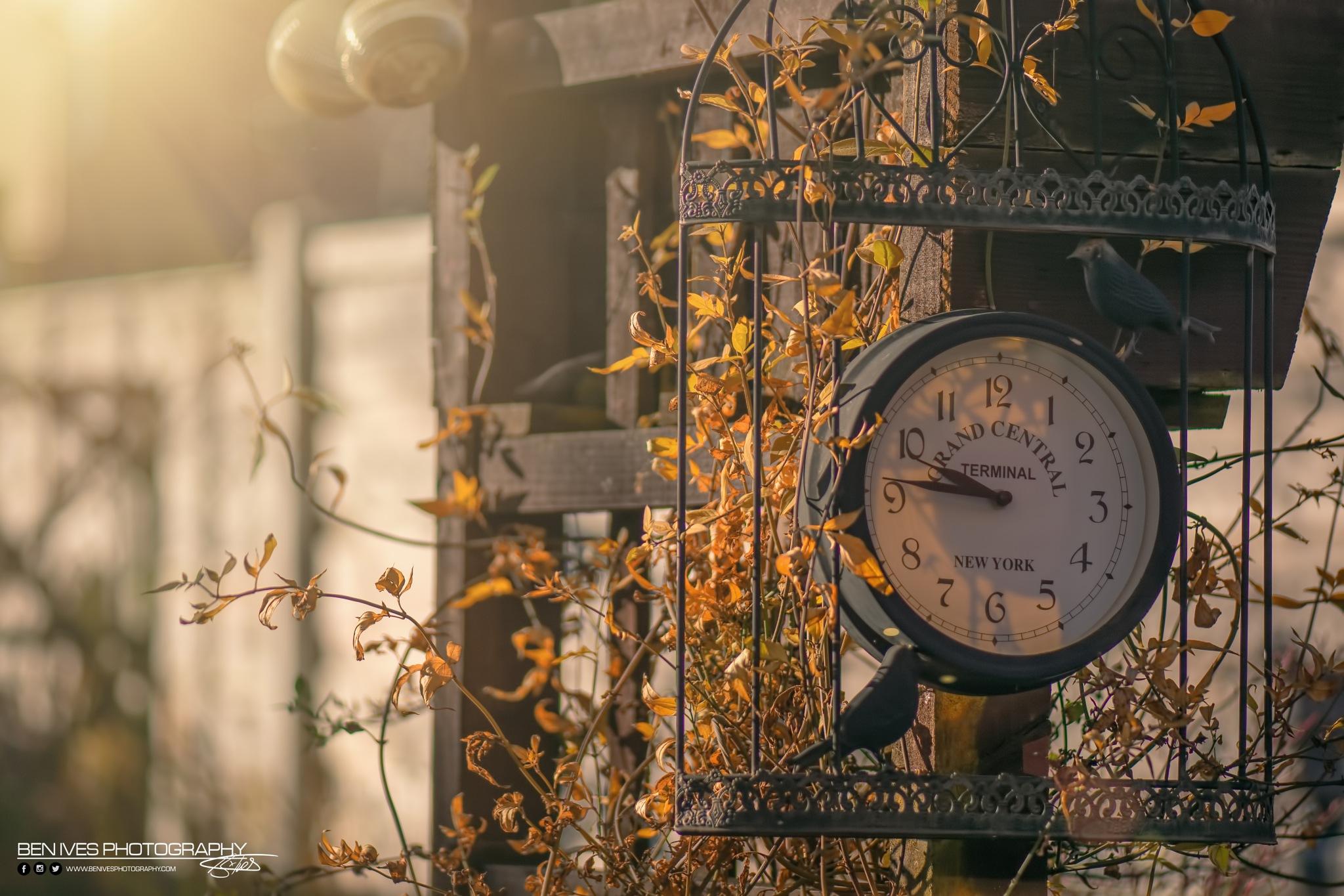 Mornings by BenIvesPhotography