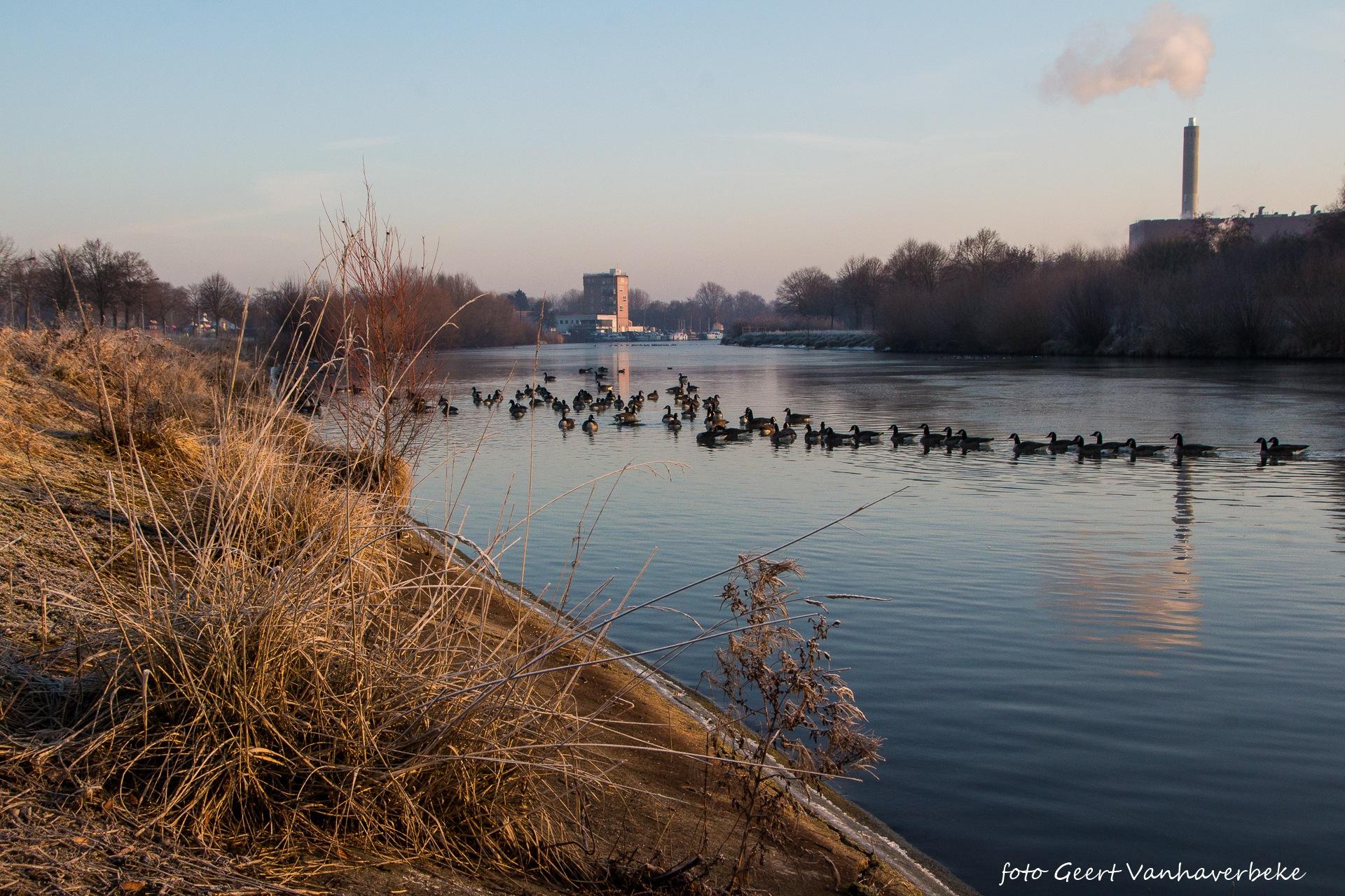 Leie in Kuurne by Geert Vanhaverbeke