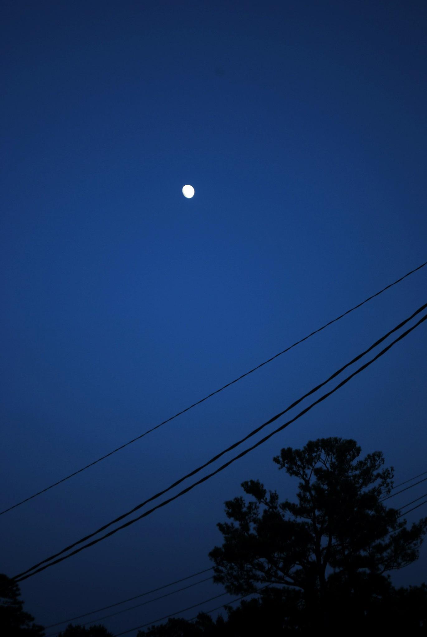 dark as sky by Shahram Shamsedin