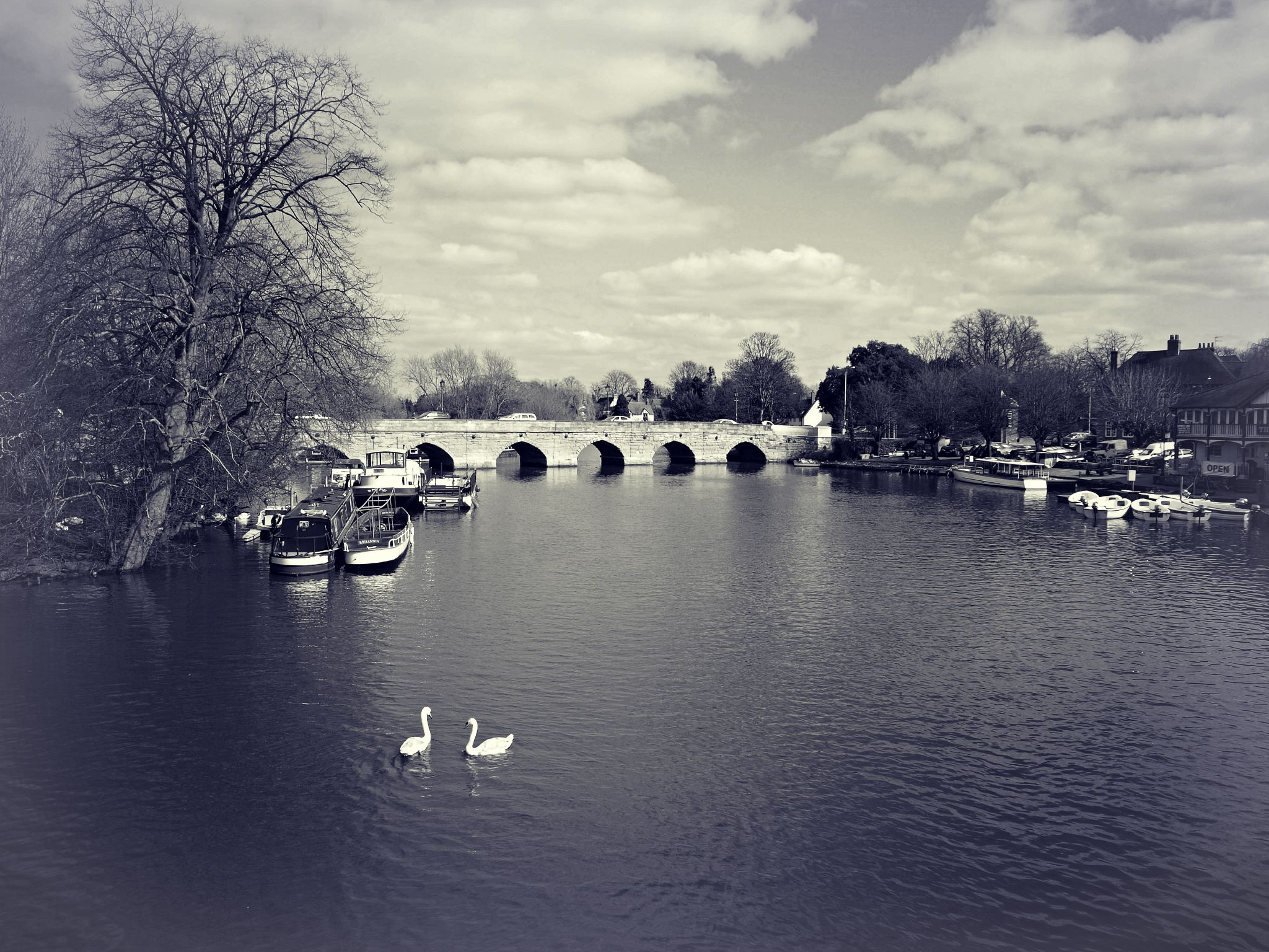 The bridge by Tim Durrant