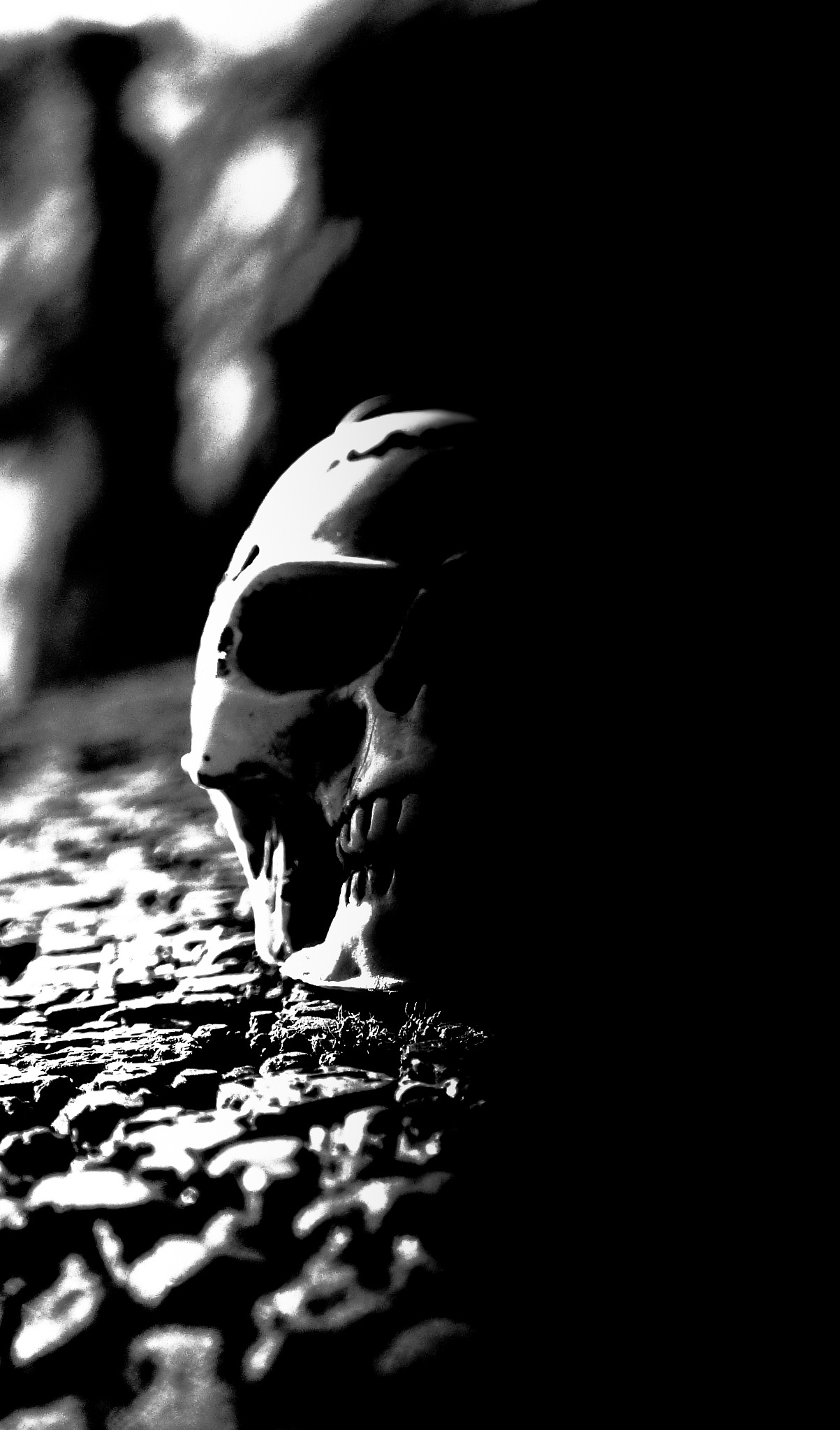 Darkness by Bátyai Attila