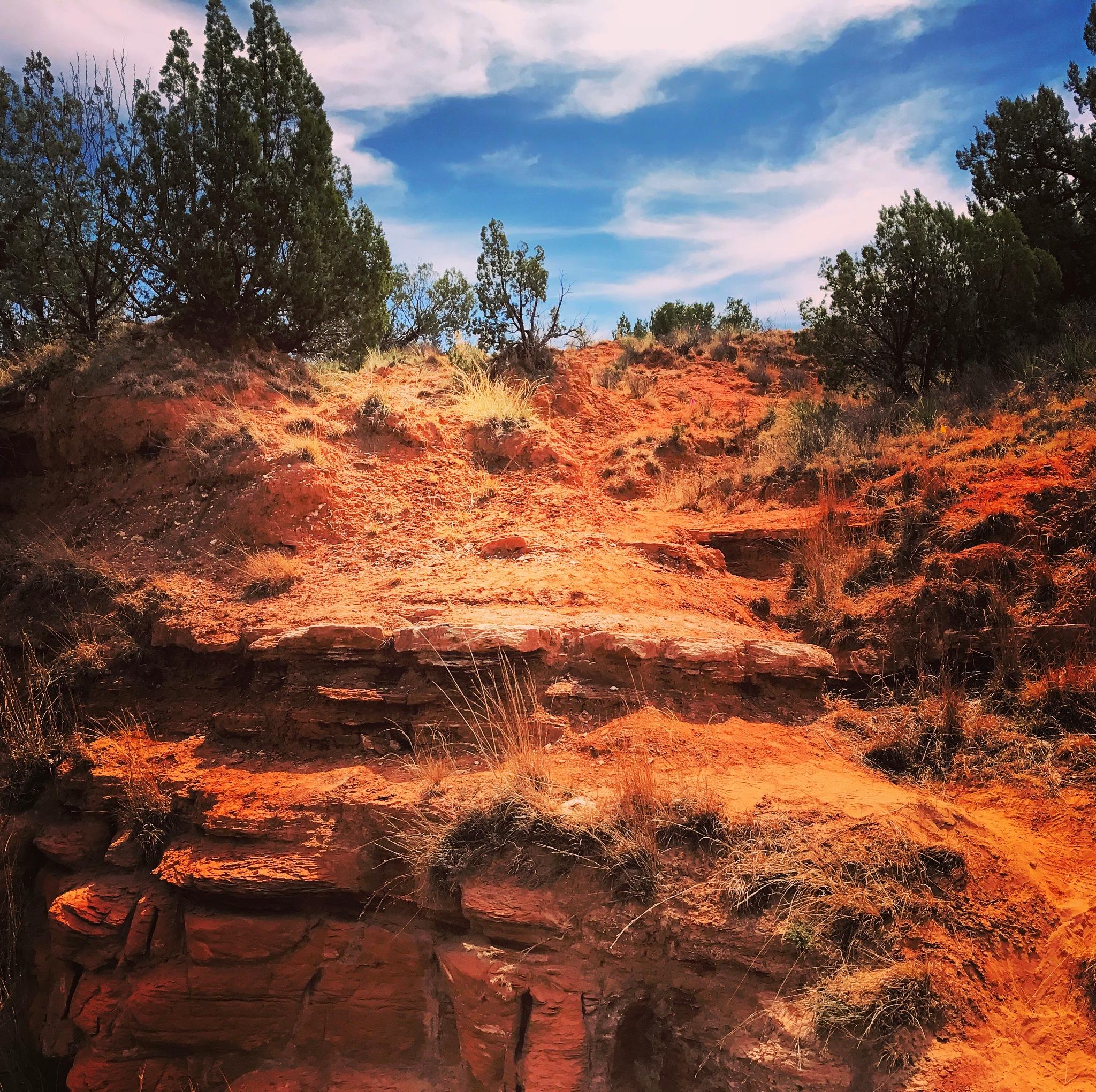 Canyon side by Danae Martinez